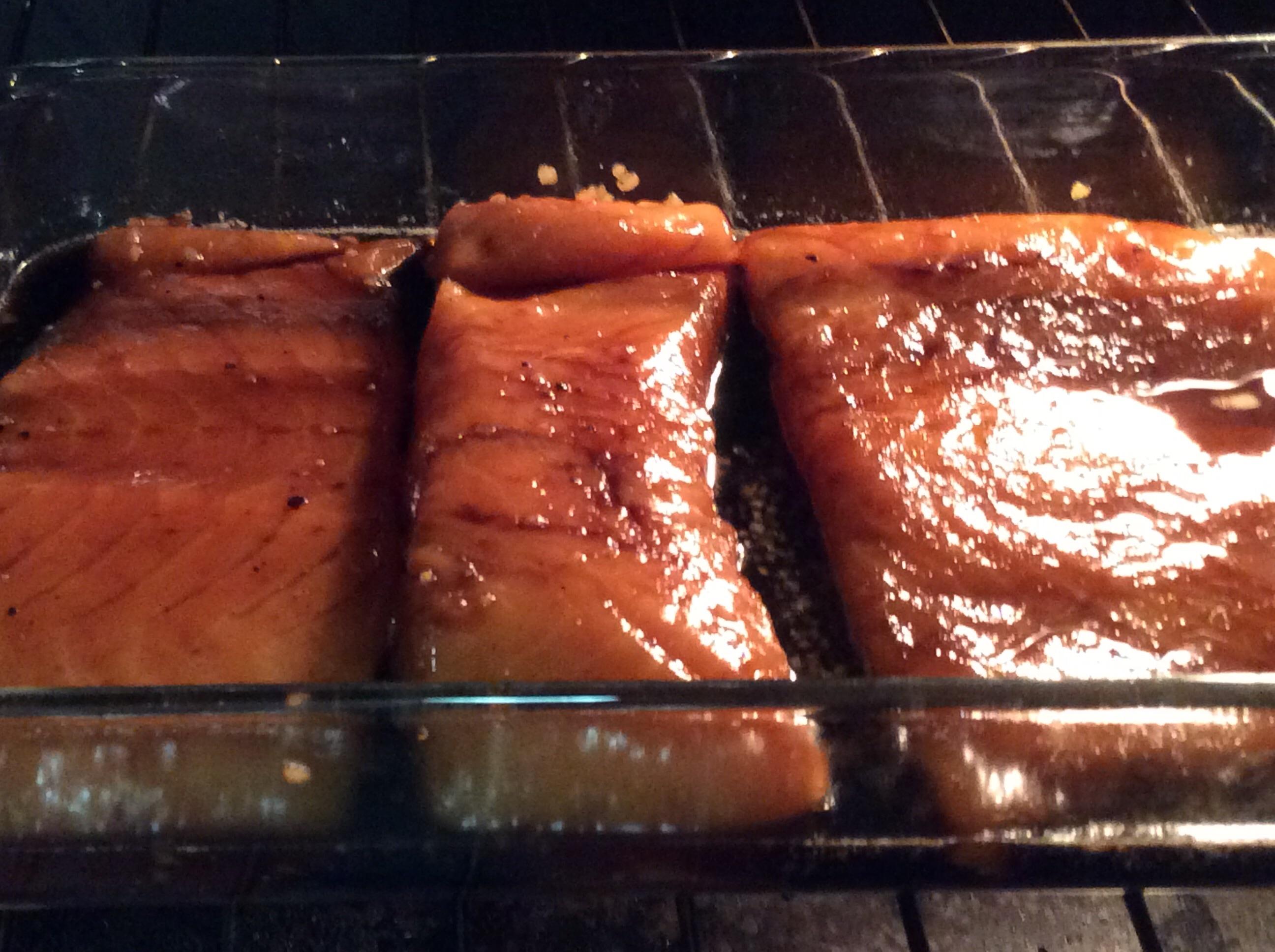 Maple Salmon Judi221