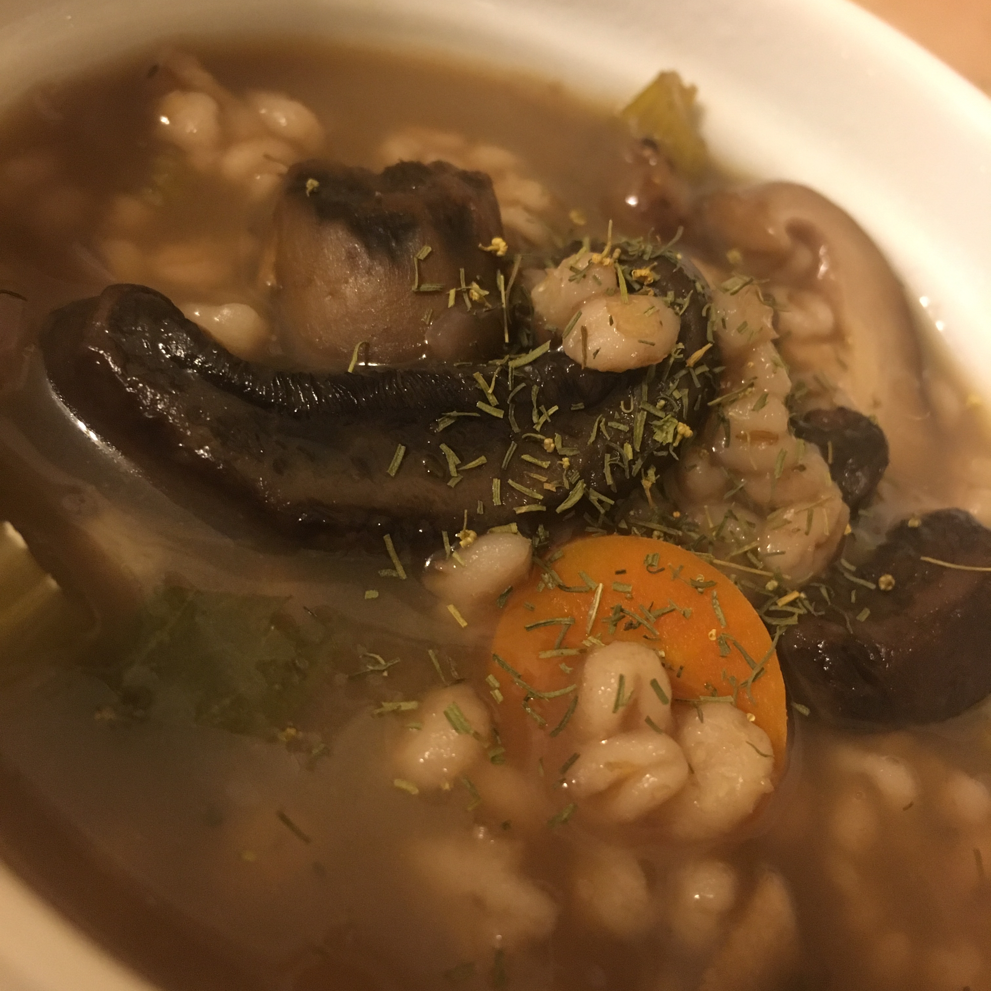 Dilled Vegetable Barley Soup Jess Nemcová