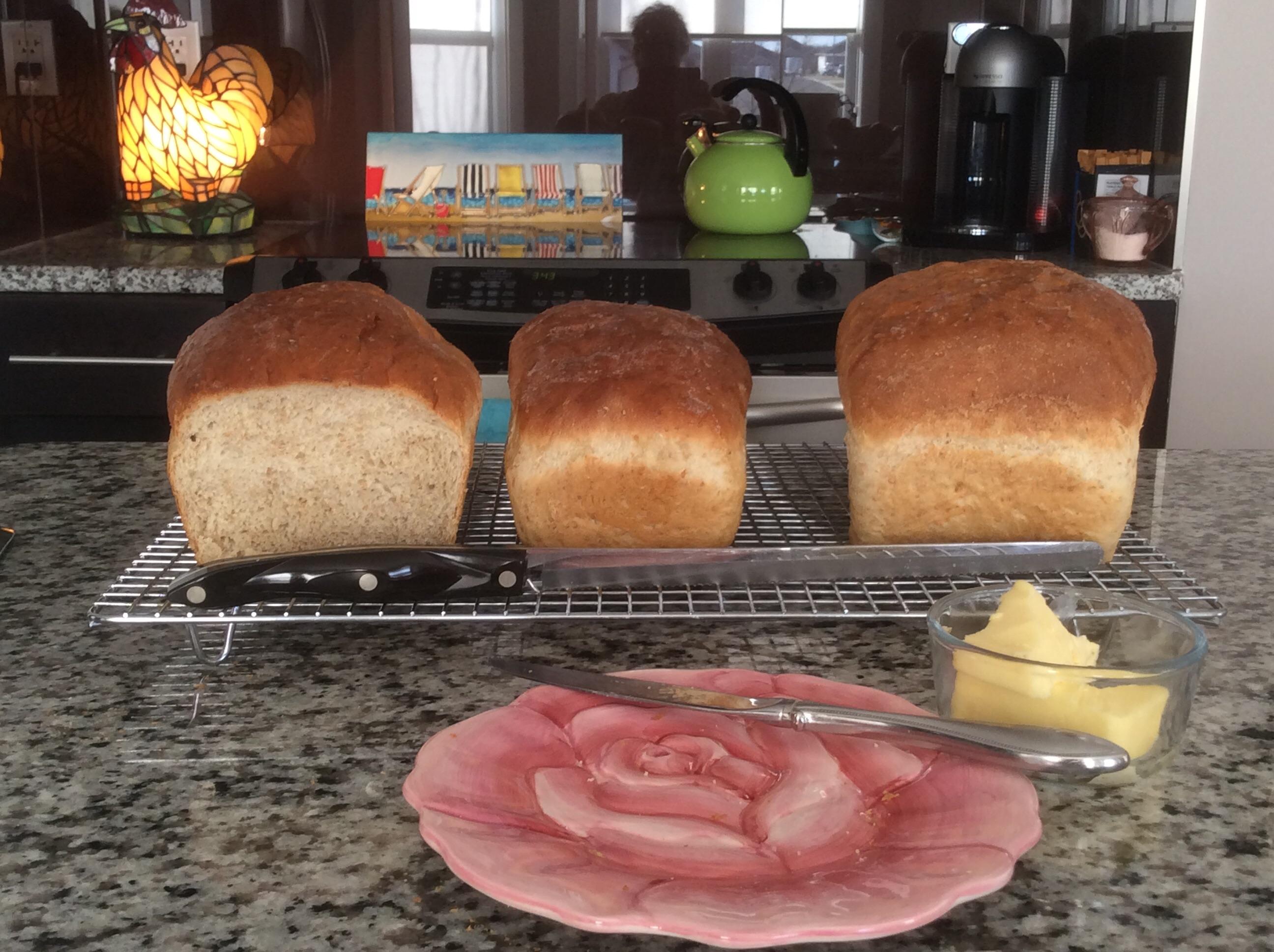 Homemade Wonderful Bread sharonjordan