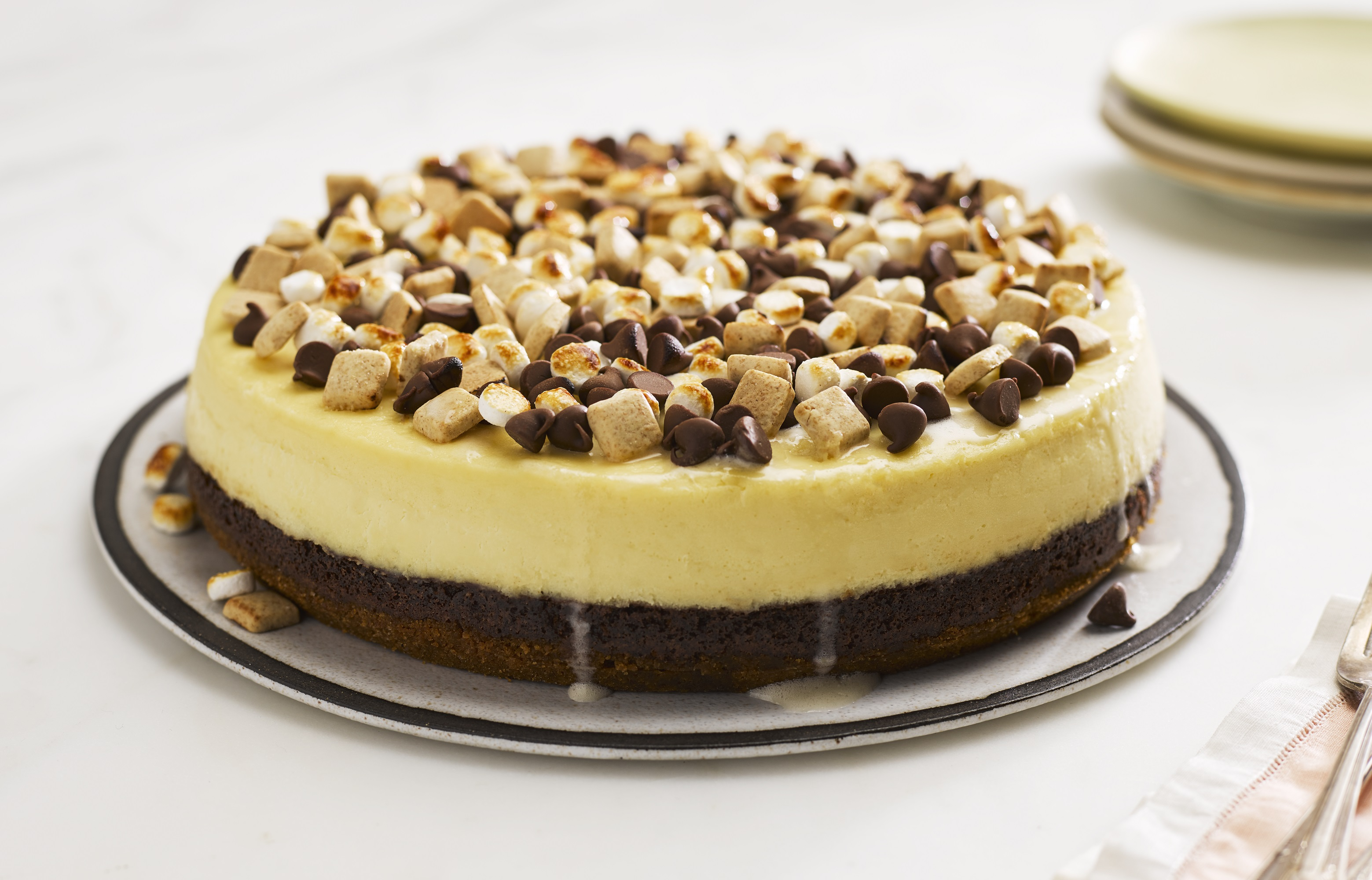 S'mores Pieces Cheesecake
