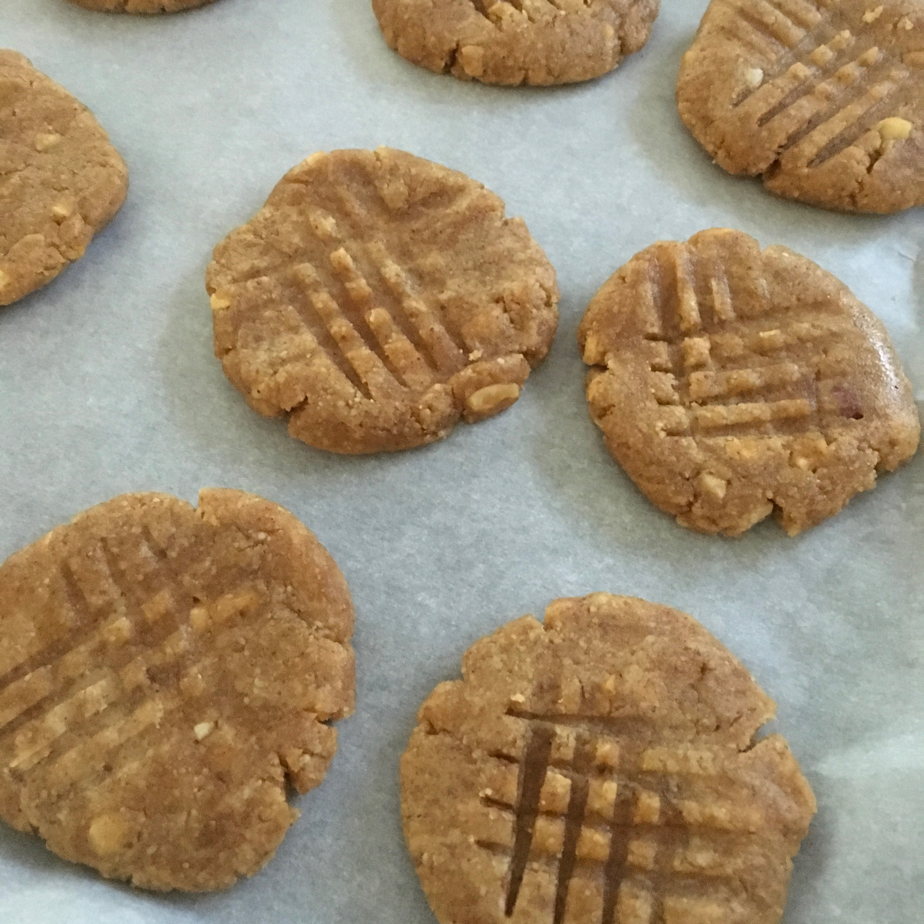 Nut Butter Chocolate Chip Cookies (Gluten-Free) Inkadog
