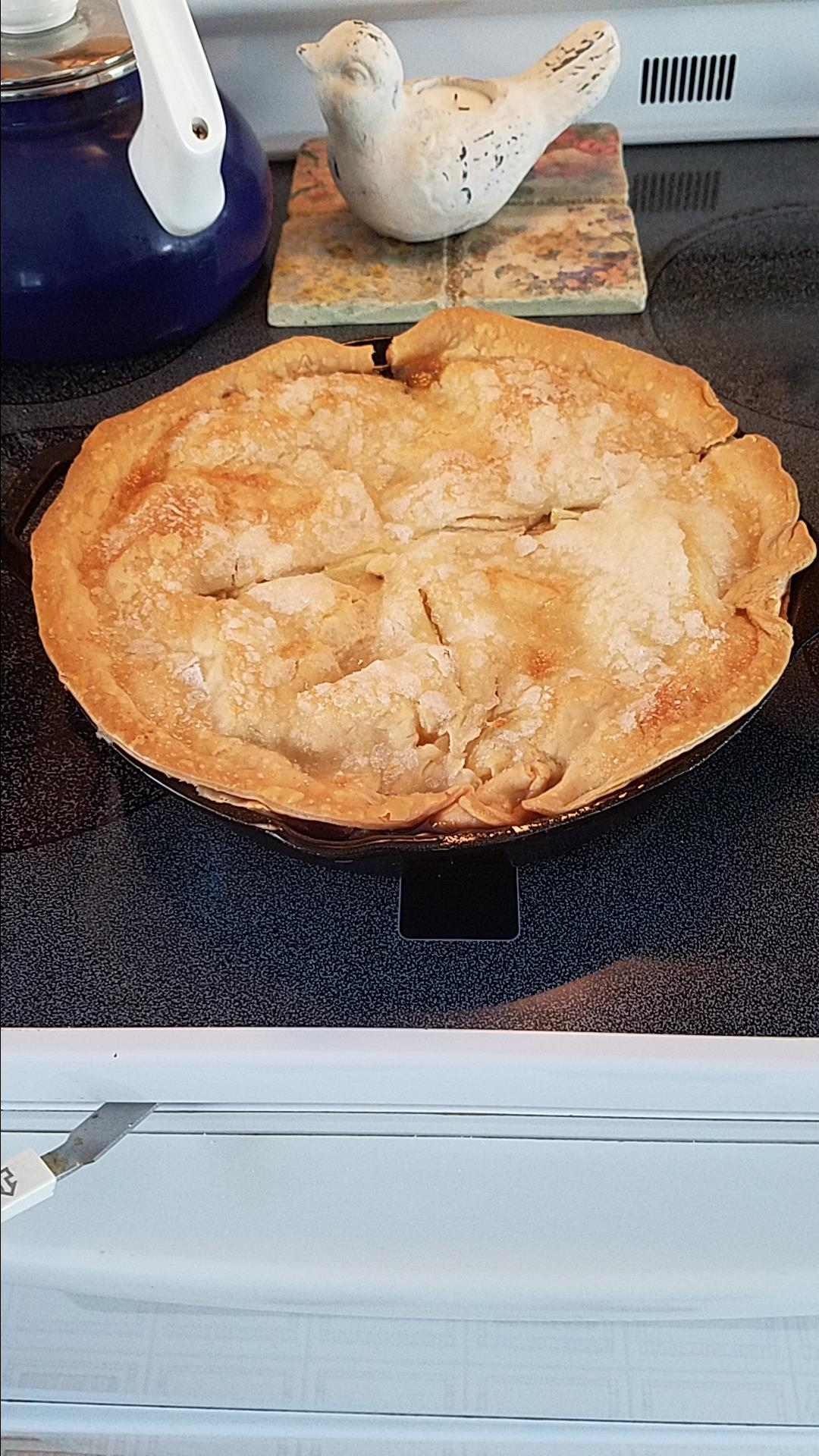 Grandma's Iron Skillet Apple Pie Robert Perry Jr