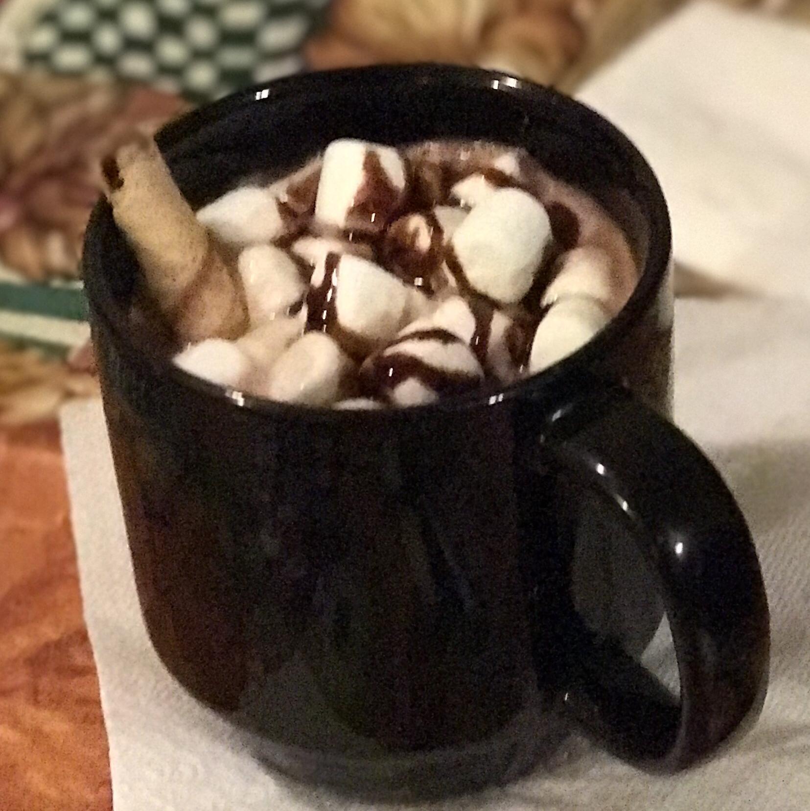 Homestyle Hot Cocoa