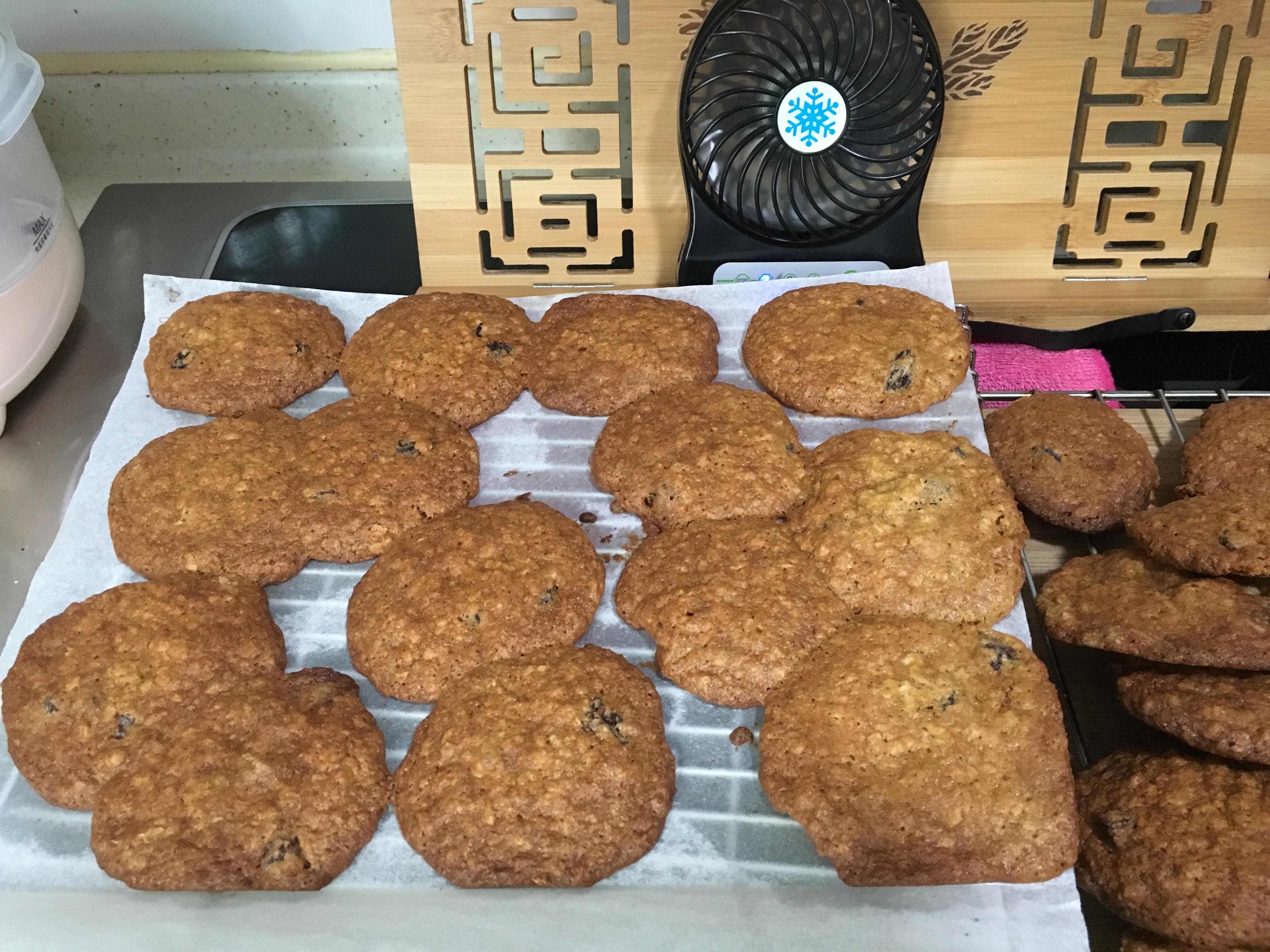 Oatmeal Raisin Cookies IV Sandy AY