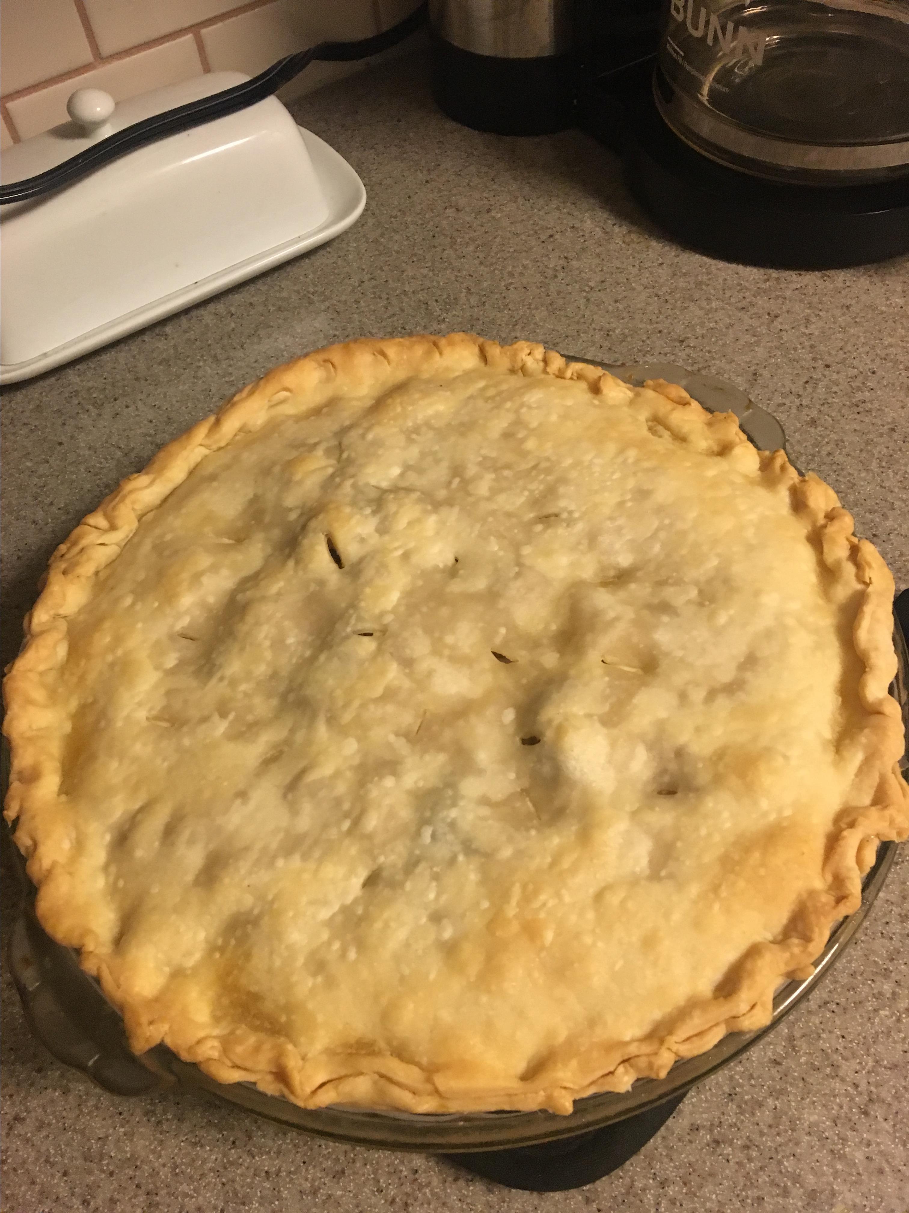 Just Another Turkey Pot Pie