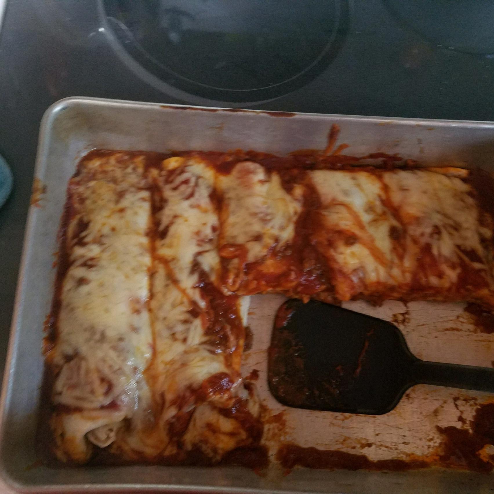 Beef Enchiladas with Homemade Sauce dakgat3217