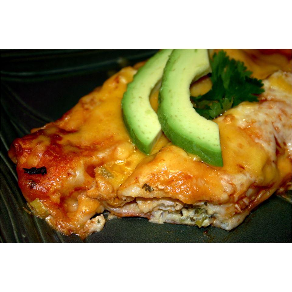 Savory Halibut Enchiladas jalexandropoulos