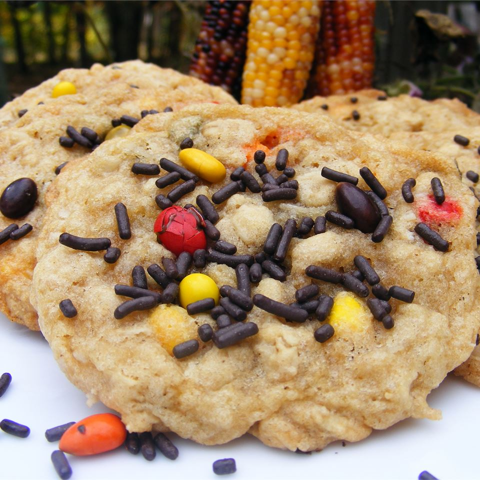 Sunflower Oatmeal Cookies abapplez