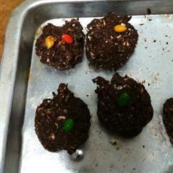 Brownie Oat Cookies