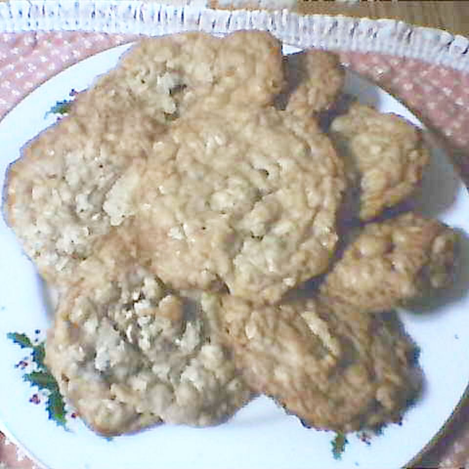 Buffalo Chip Cookies Dawn Raegene Mendenhall Scott