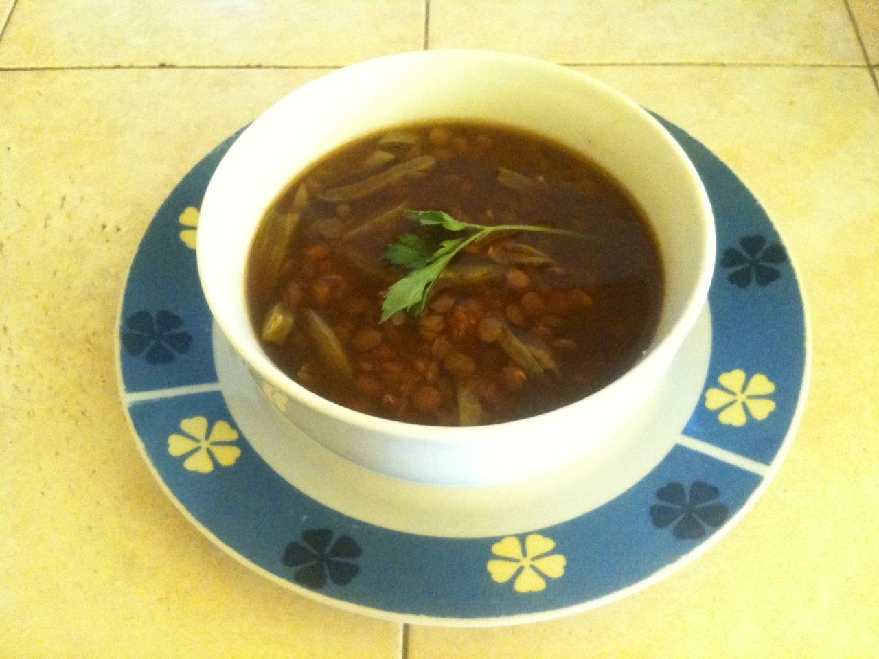 Mexican Lentil Soup with Cactus