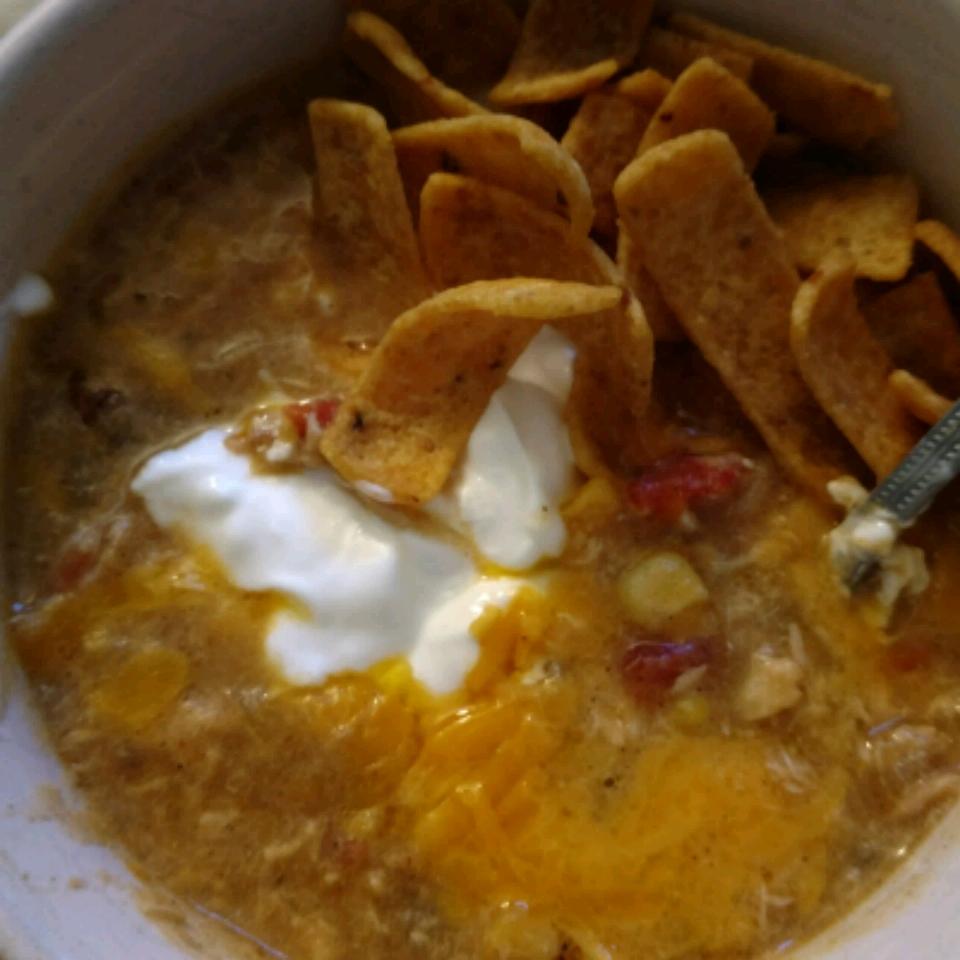 Southwest Tortilla Soup Karen Wells
