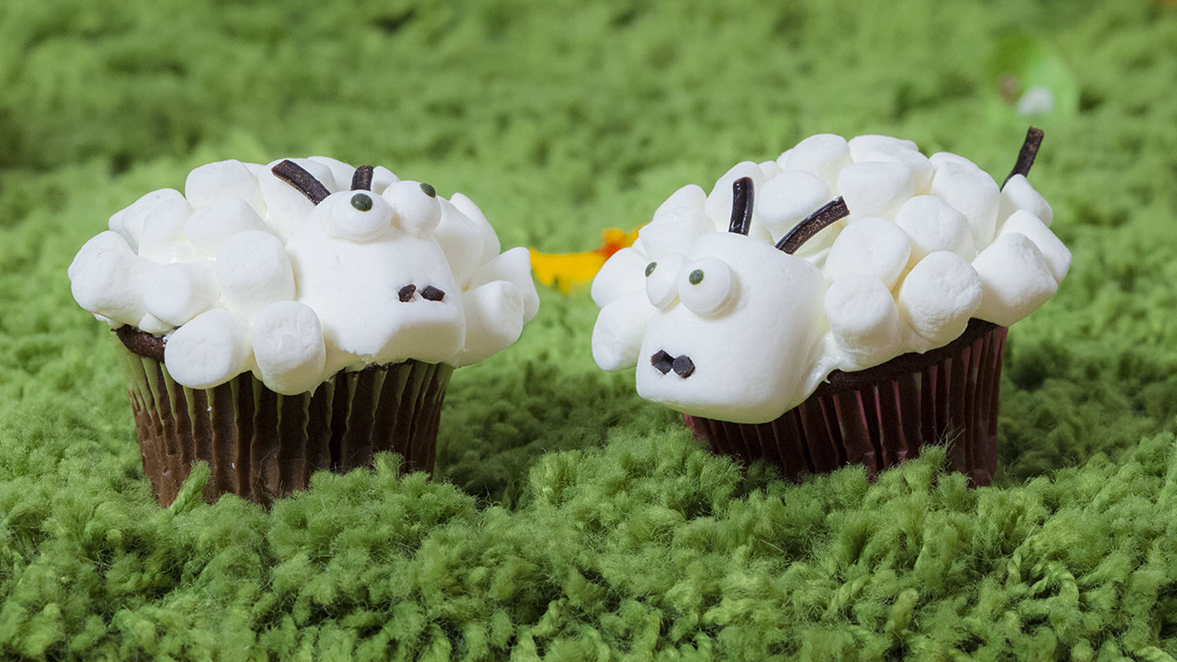 Easter Lamb Cupcakes AllrecipesPhoto