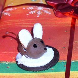 Mice Robograndma Davis