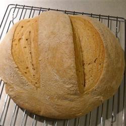 Sourdough Tomato Bread Talonstorm