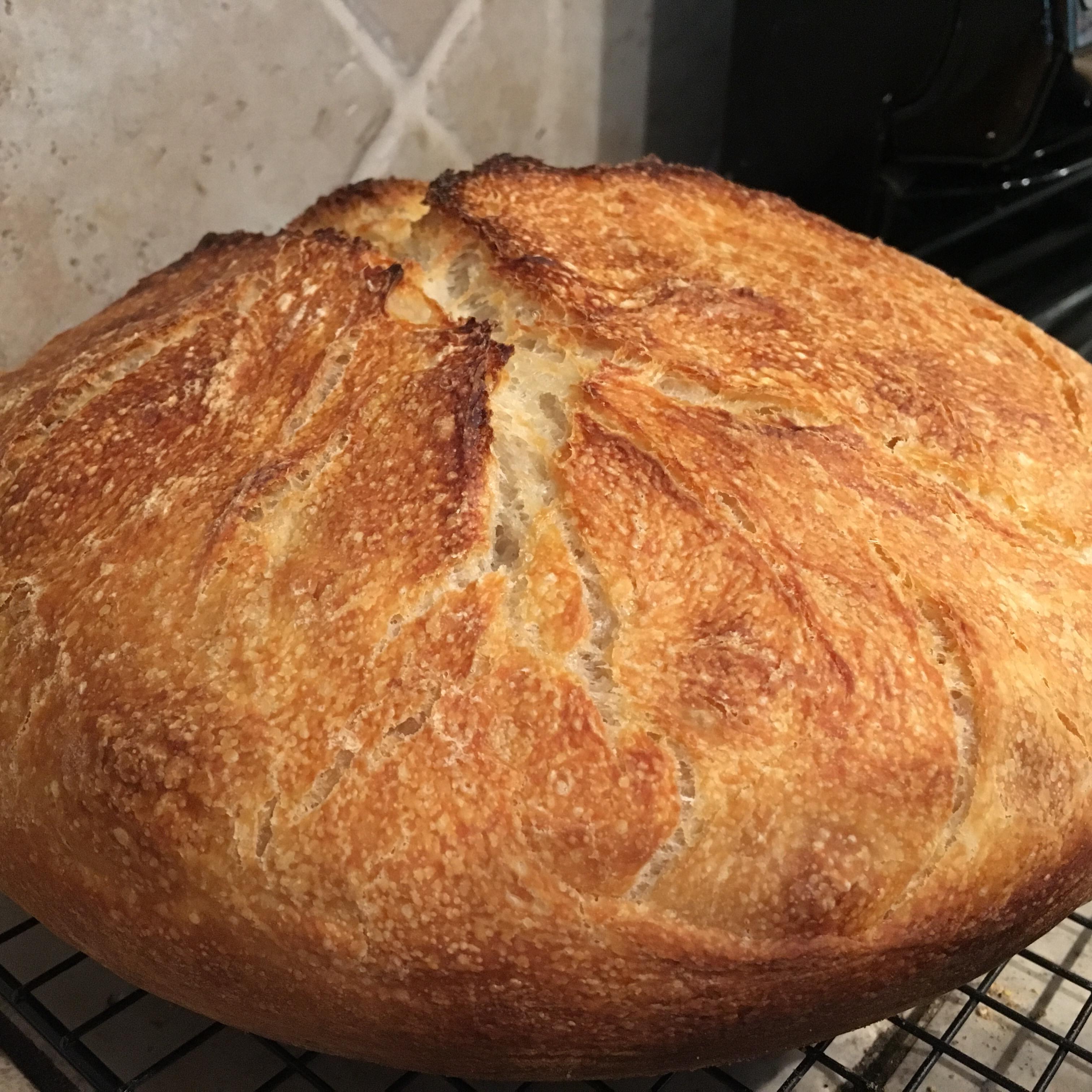 Better-Than-Bakery No-Knead Sourdough