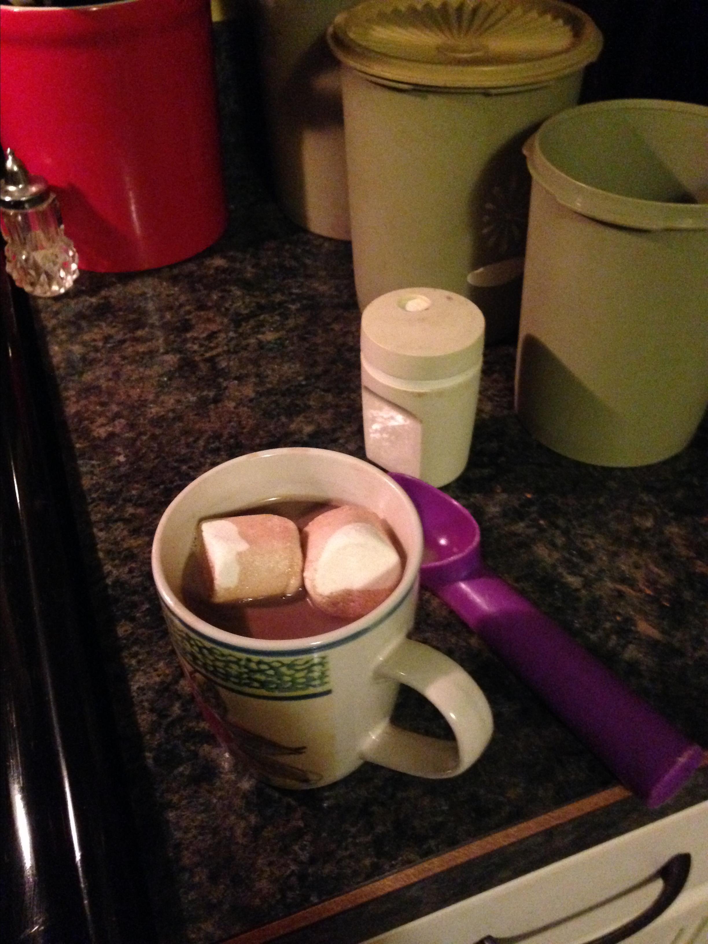 Creamy Hot Cocoa