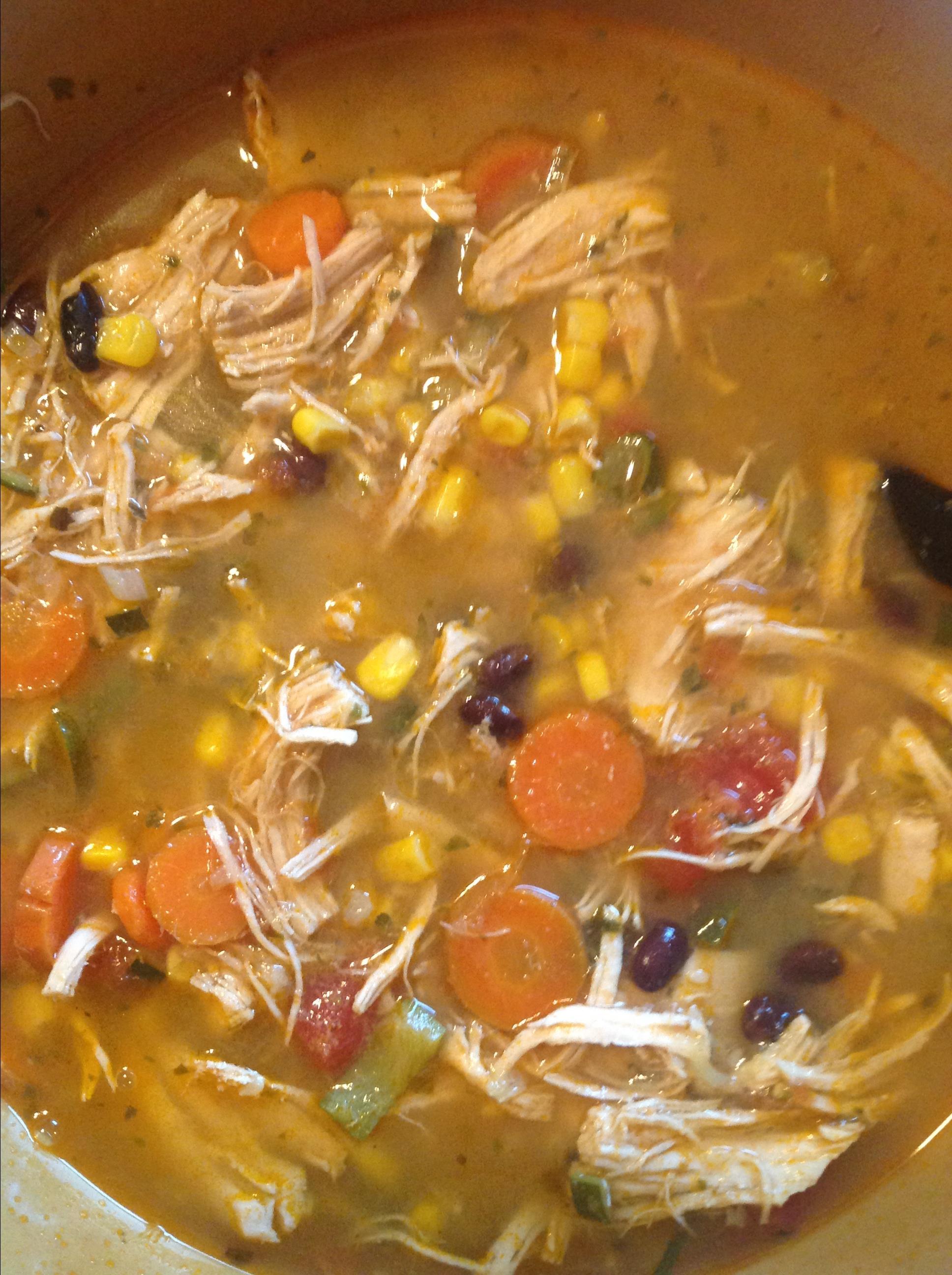Instant Pot® Chicken Tortilla Soup DCDimento