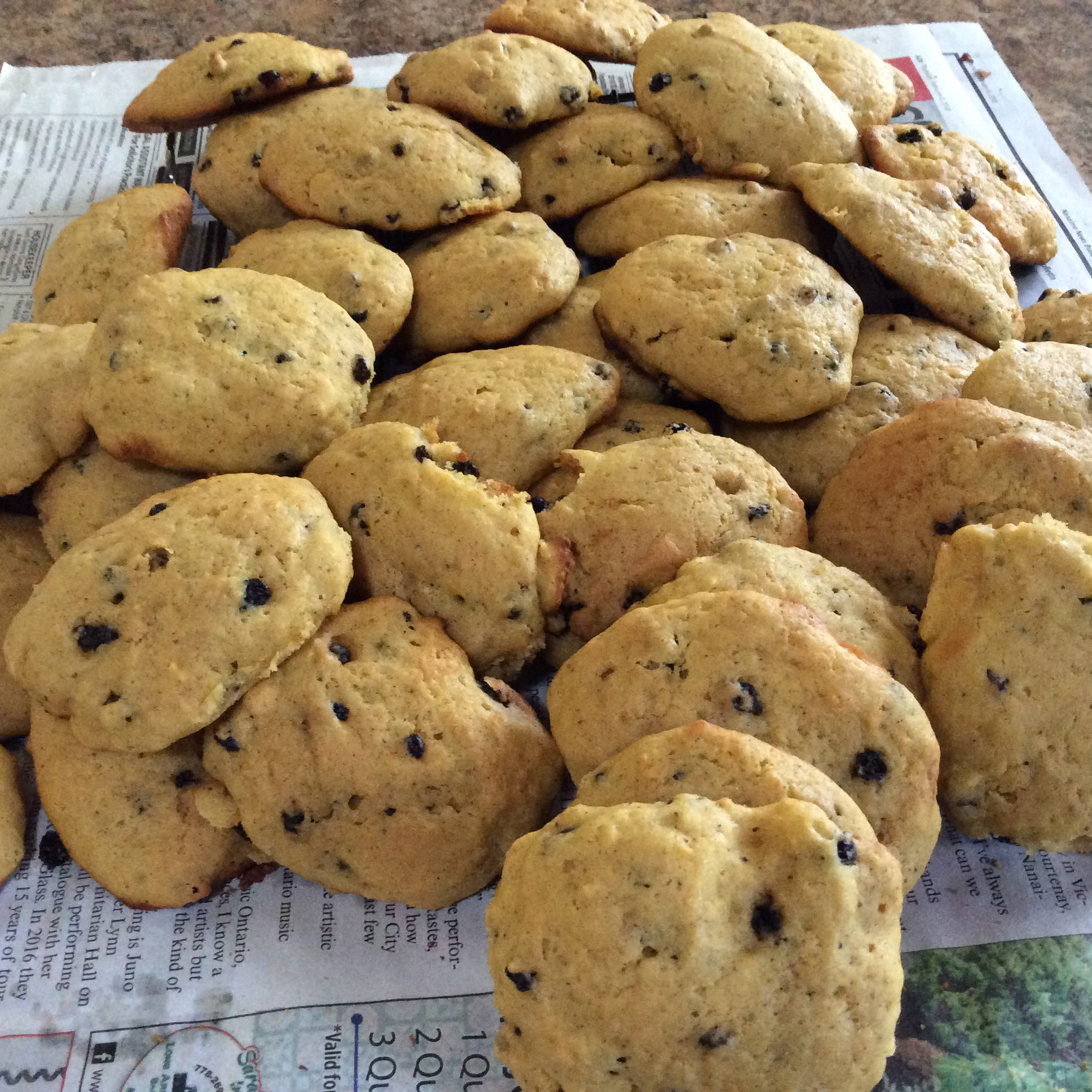 Pumpkin Cookies II Jupiter2