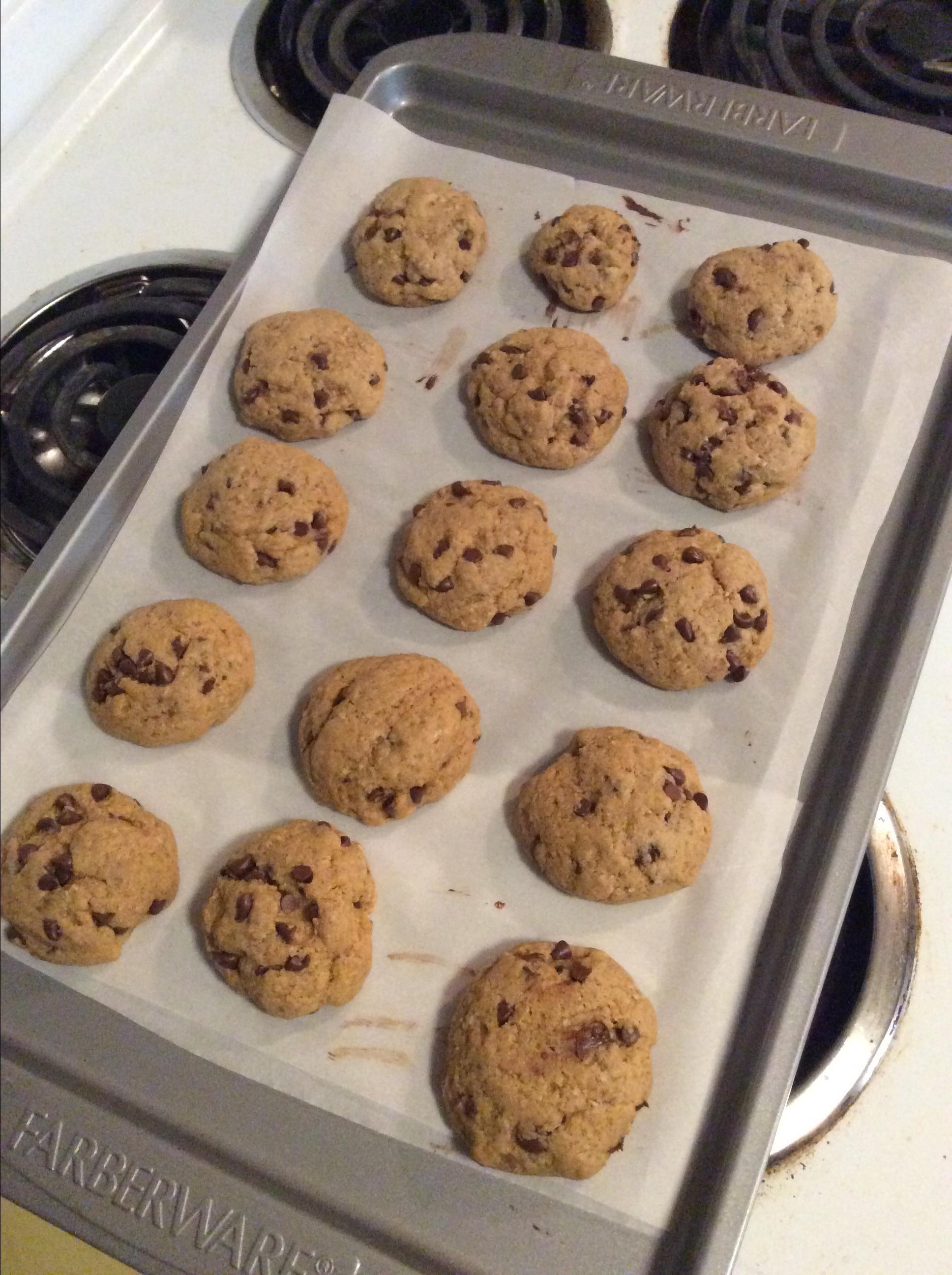 Coconut Oil Milk Chocolate Chip Oat Cookies Lisa