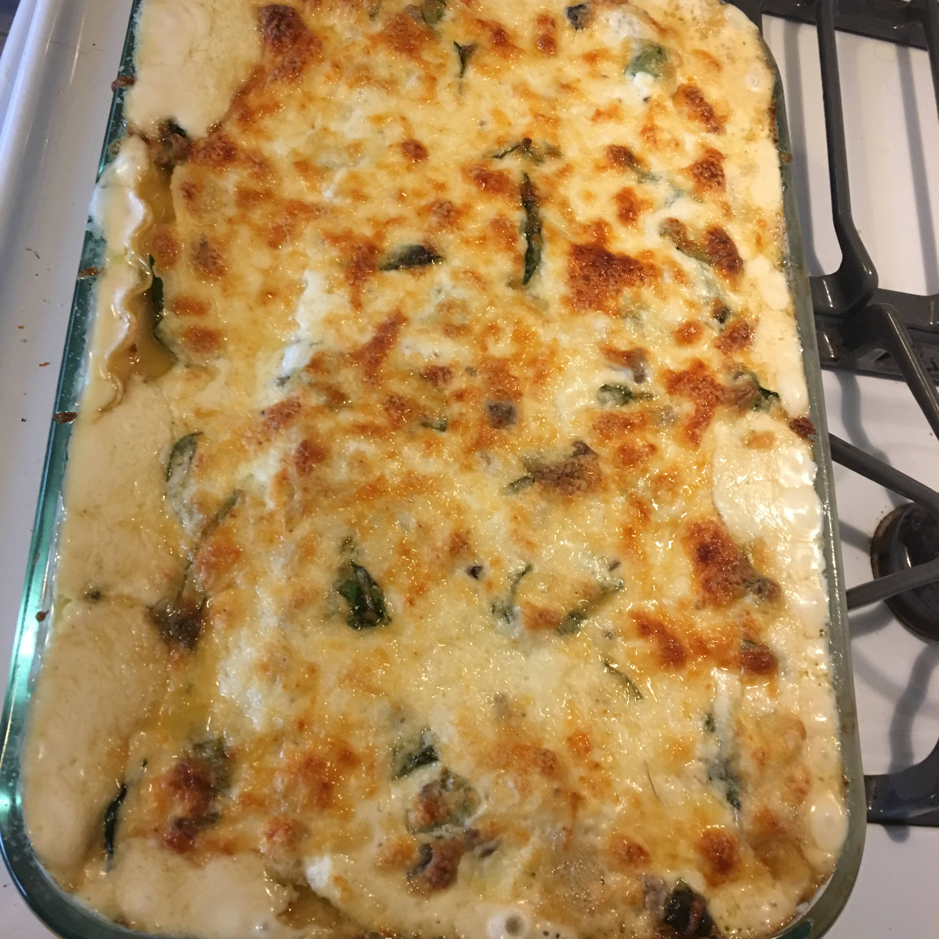 Chicken and Spinach Alfredo Lasagna Adam Bernasek