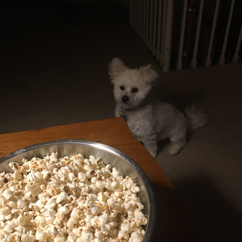 Daddy's Popcorn Janey Schleppy