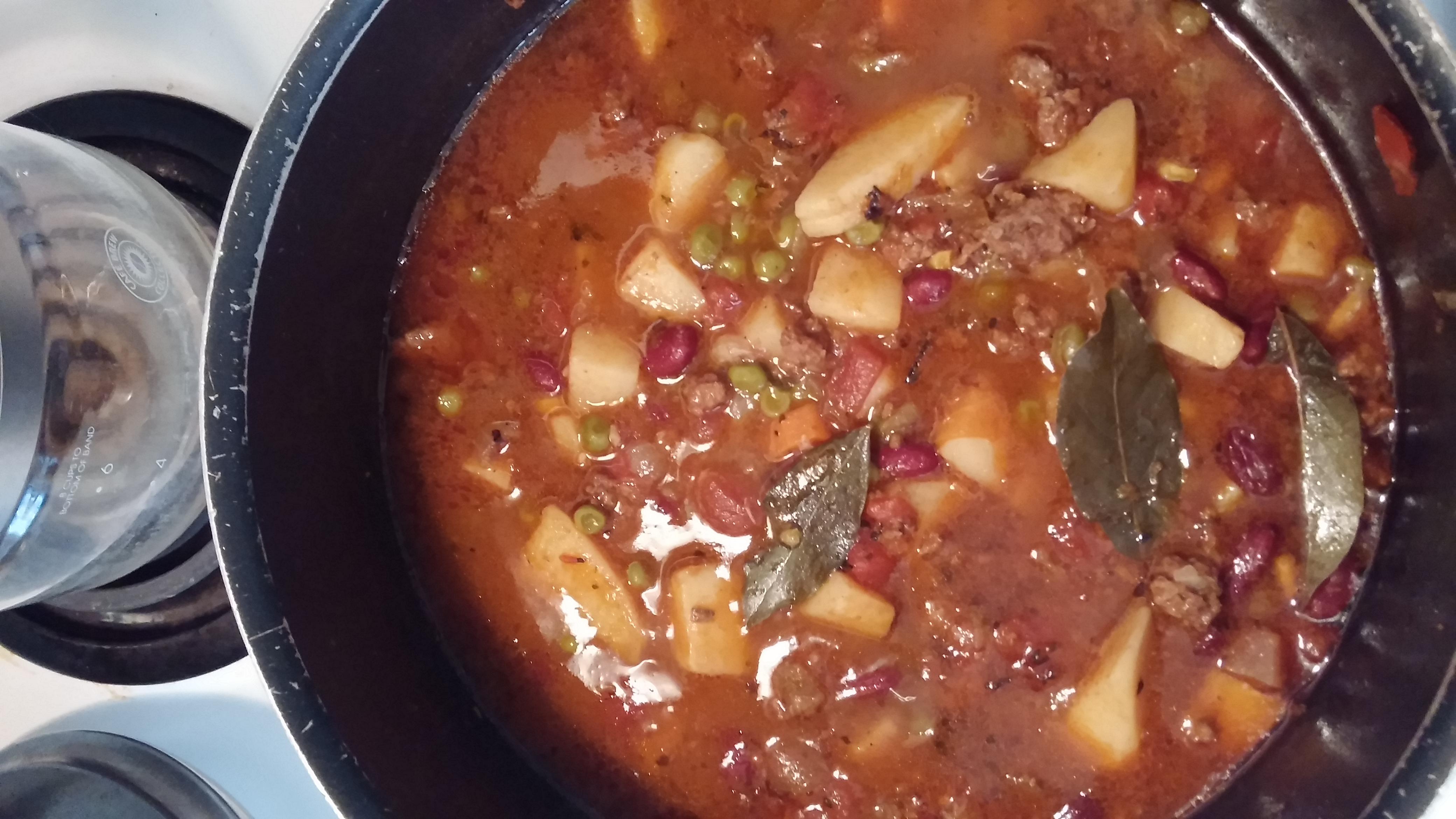 Hobo Beef and Vegetable Soup Vicki James