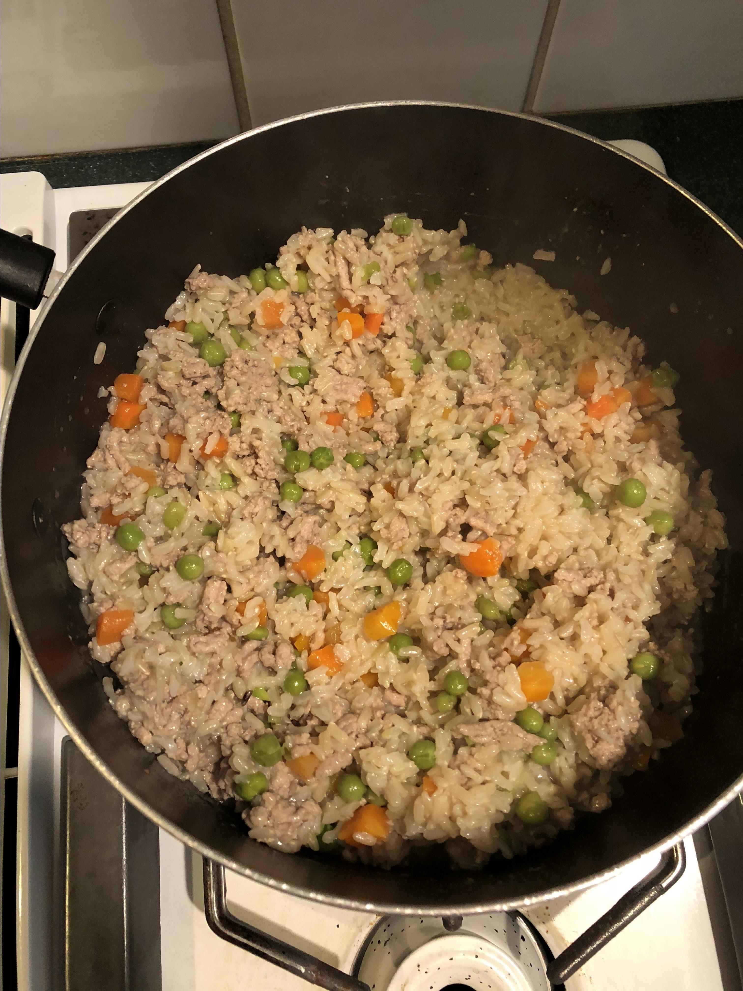 Homemade Dog Food Christie Ortega