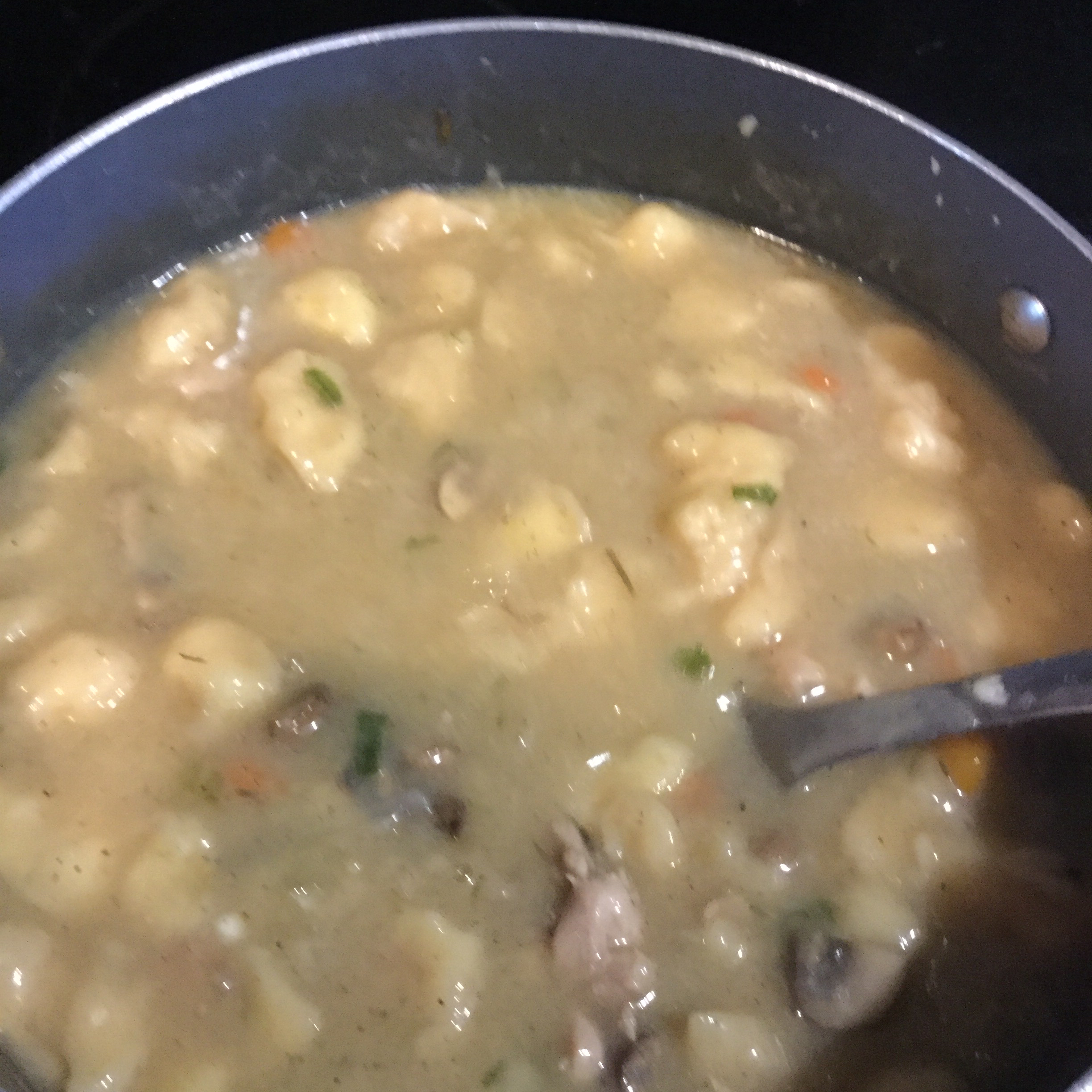 Easy Chicken and Dumplings with Vegetables luv2cook