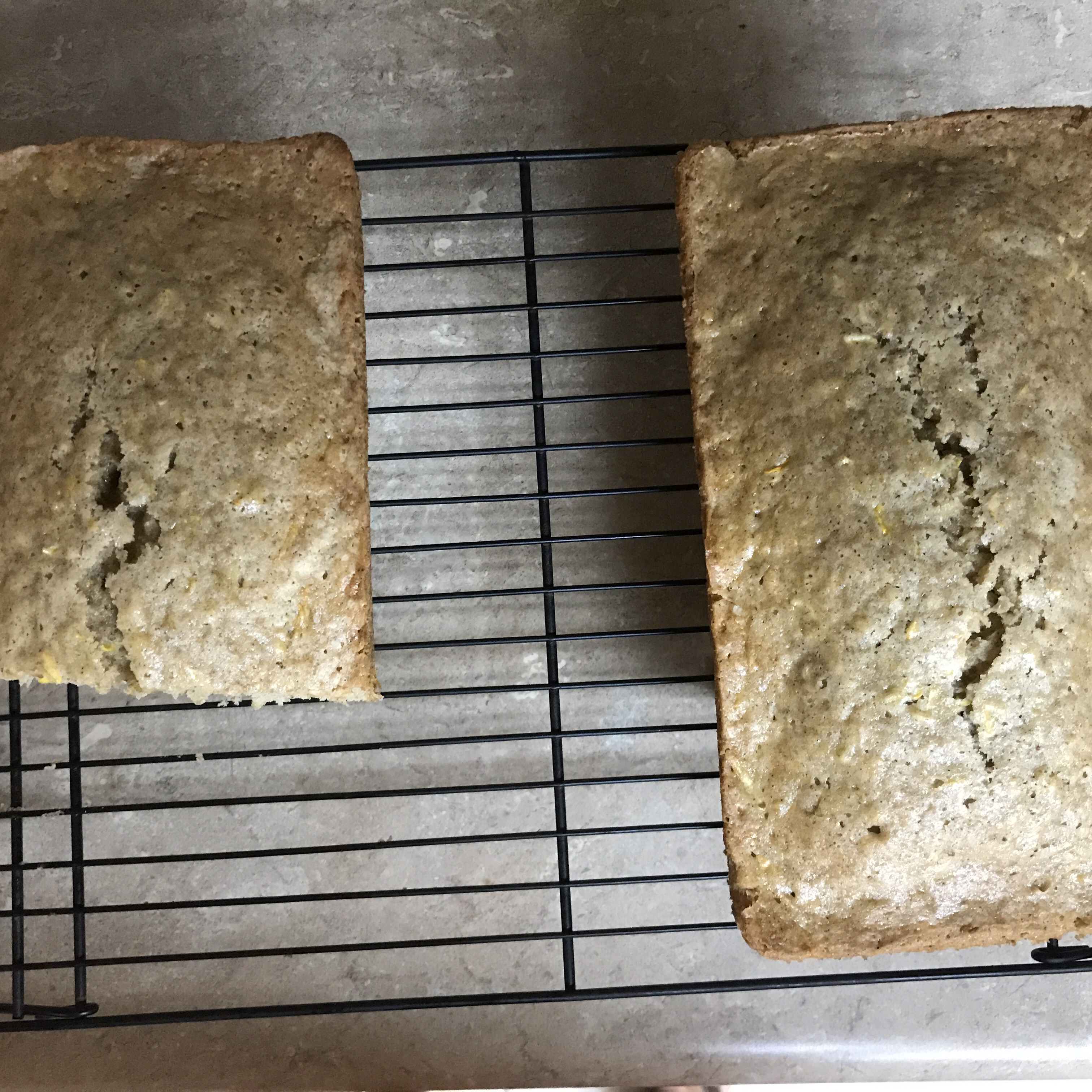 Summer Squash Bread Becky Rector