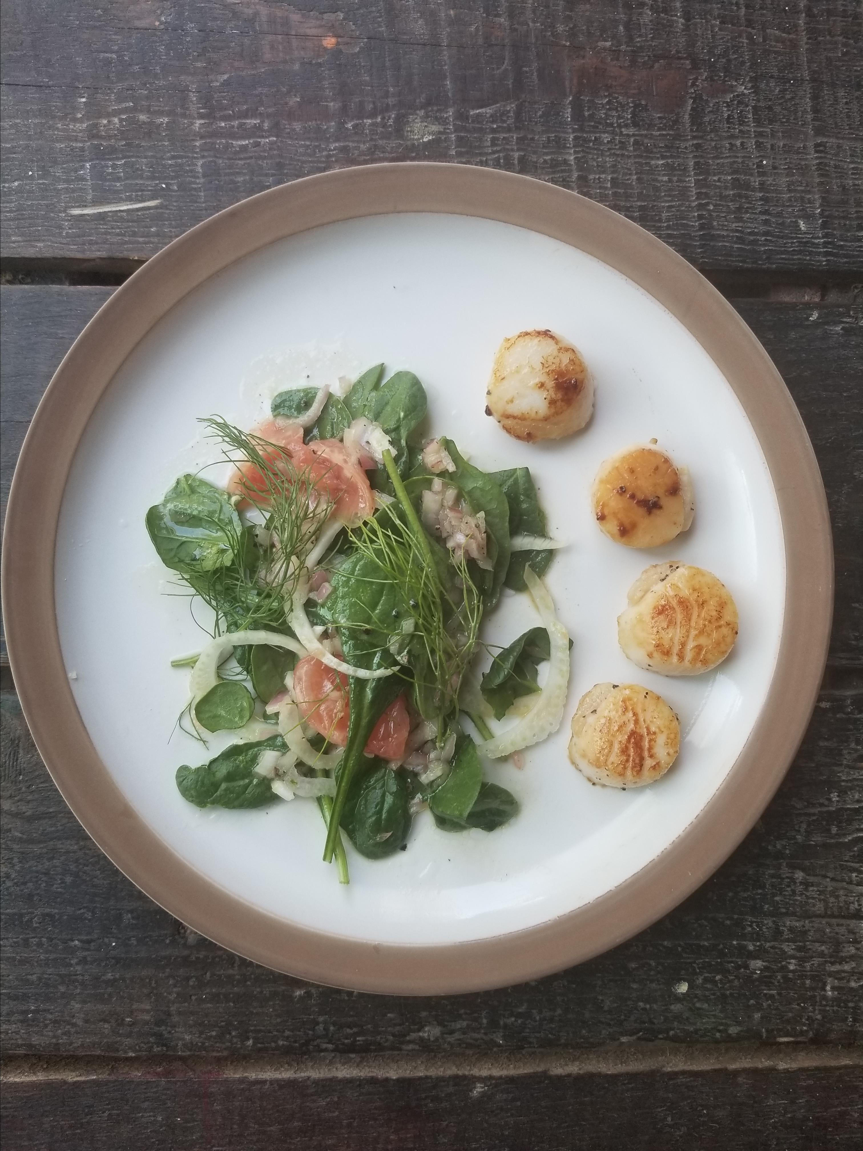 Seared Scallops with Grapefruit-Fennel Salad