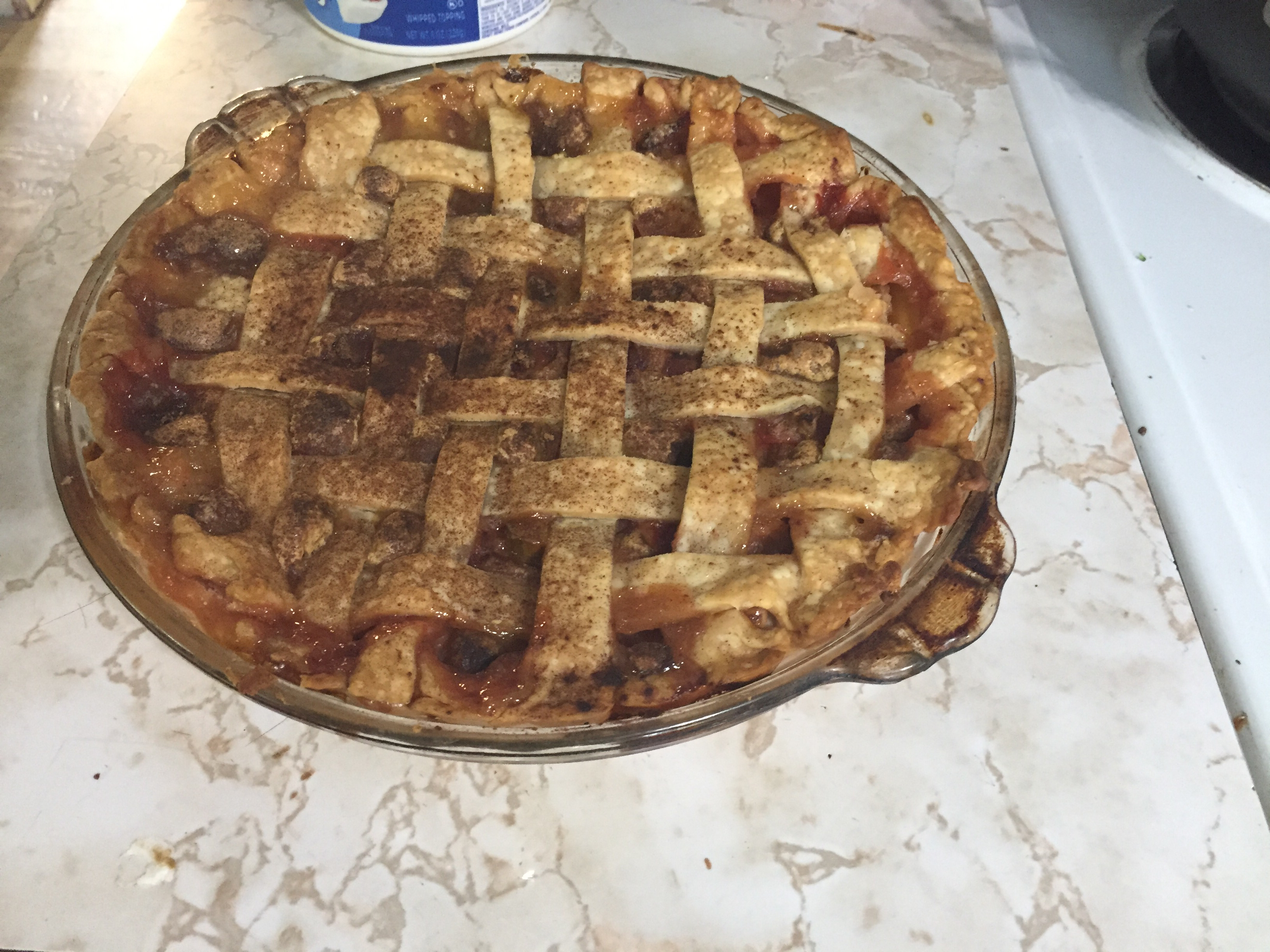 Grammy's Favorite Rhubarb Custard Pie Gloria