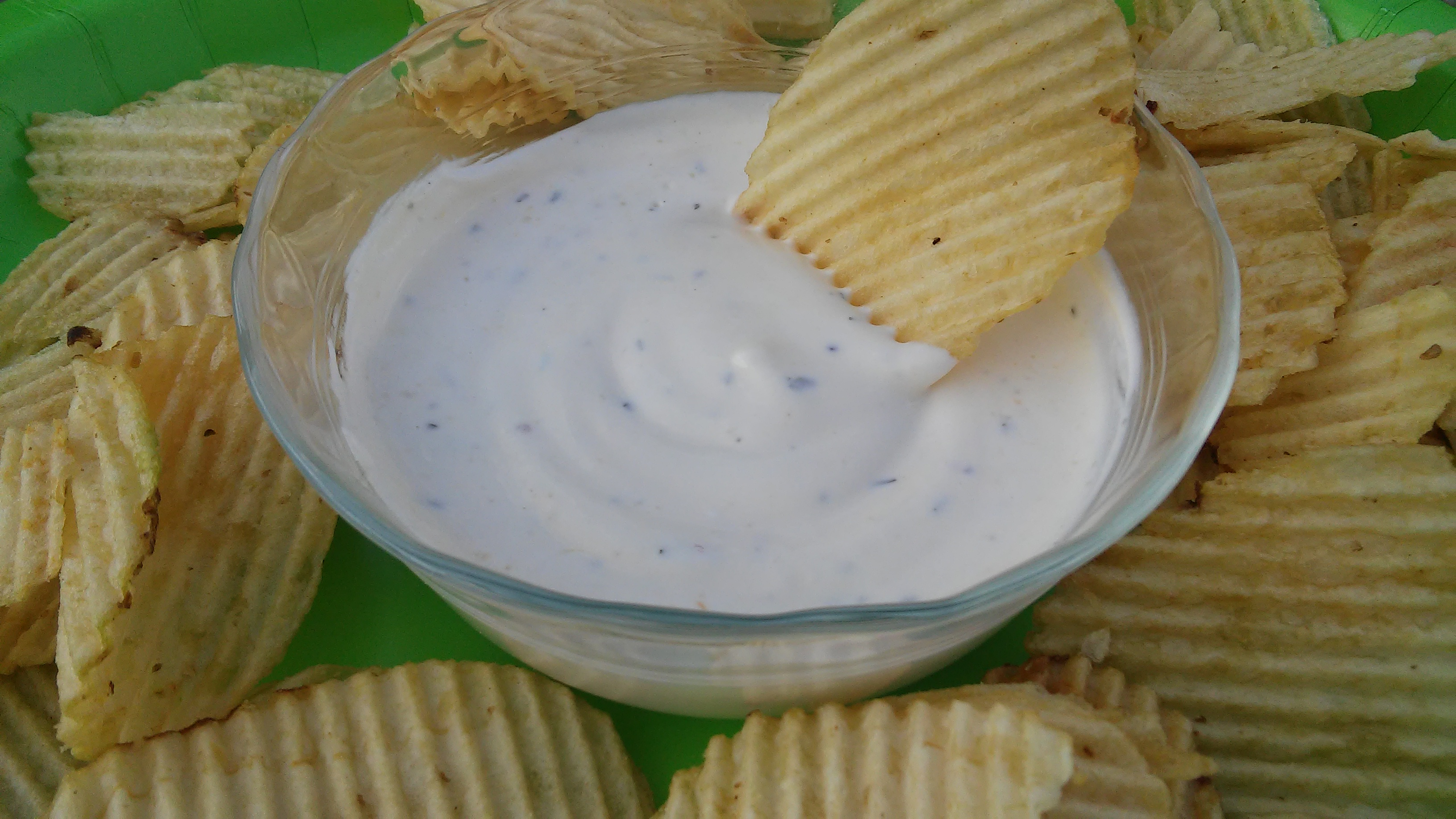 Fast and Easy Chip Dip Tammy Lynn