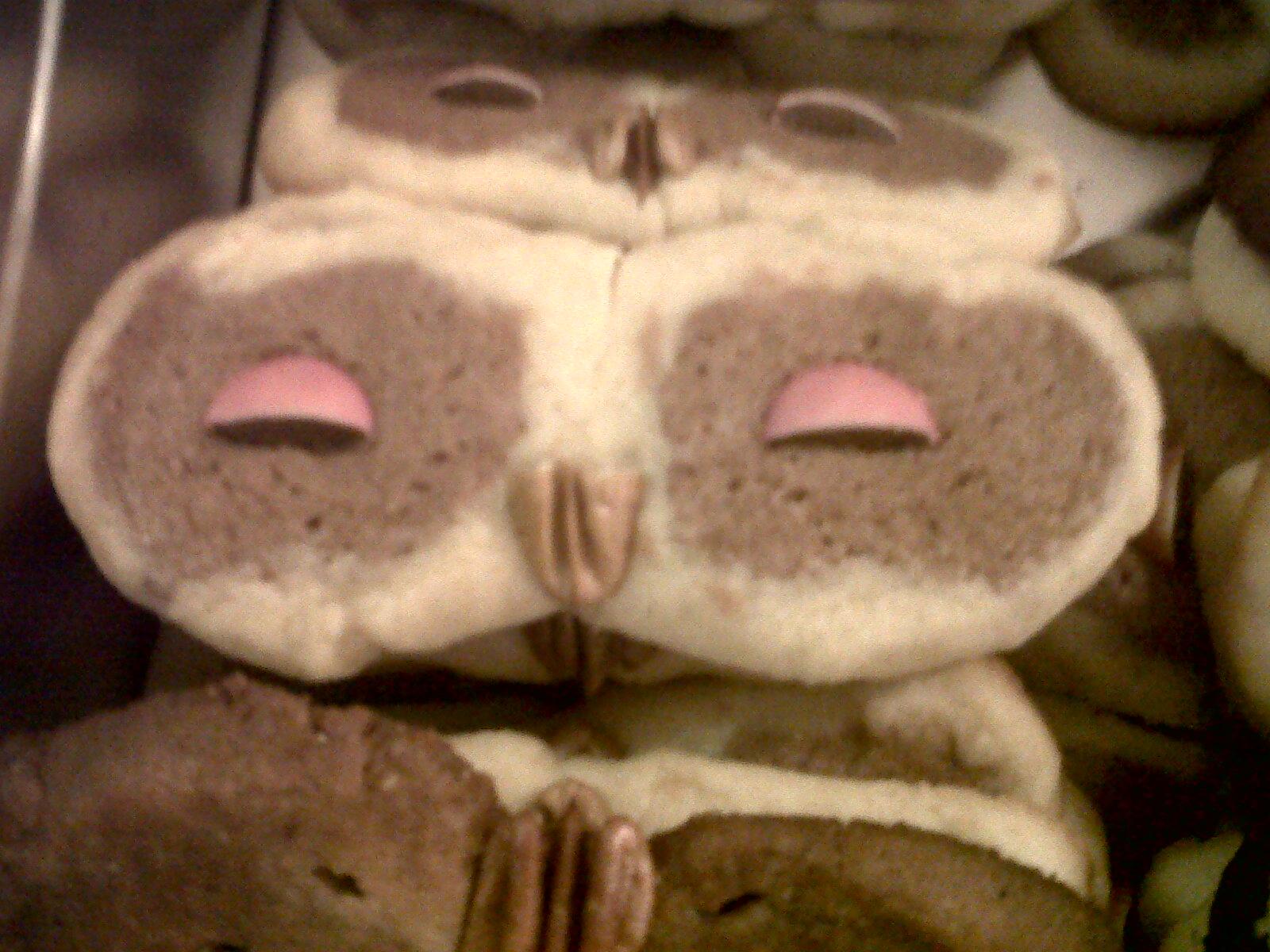 Owl Cookies sunsetacker