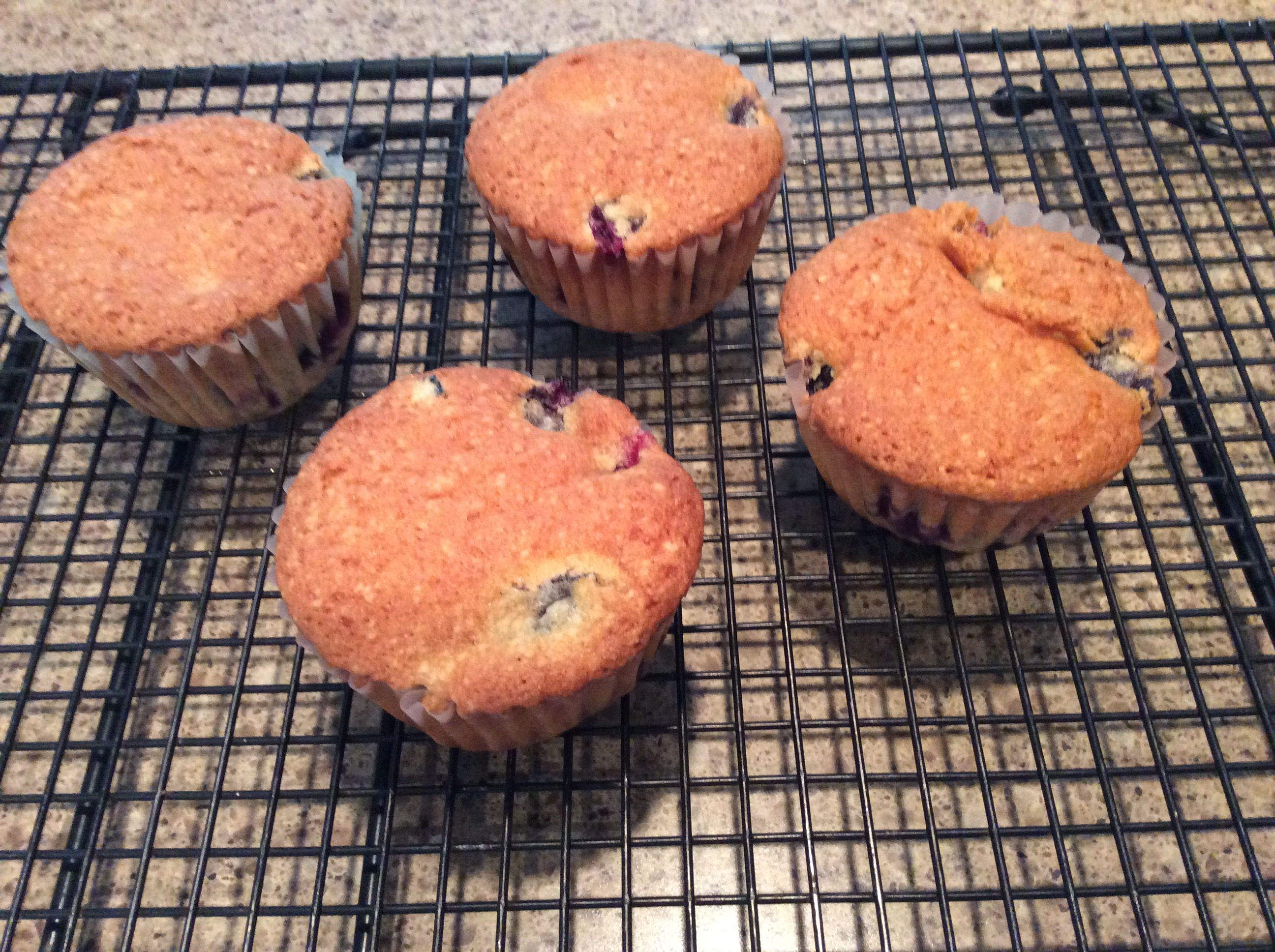 Aunt Blanche's Blueberry Muffins B J Duncan