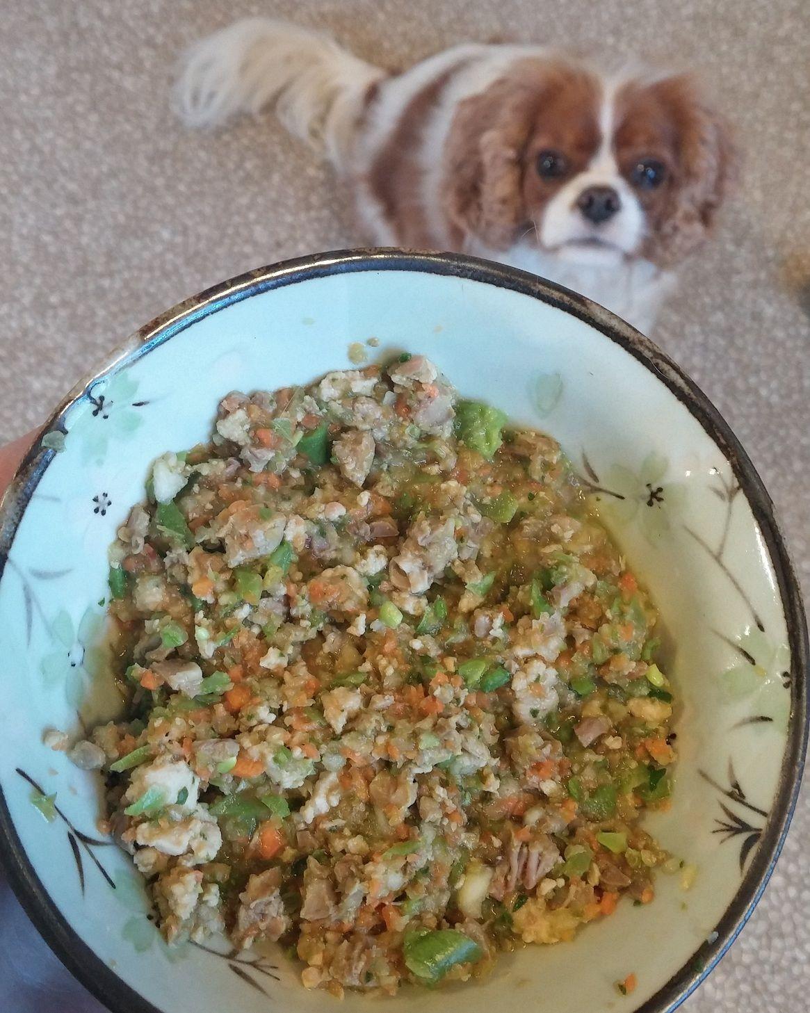 Grain-Free Homemade Dog Food
