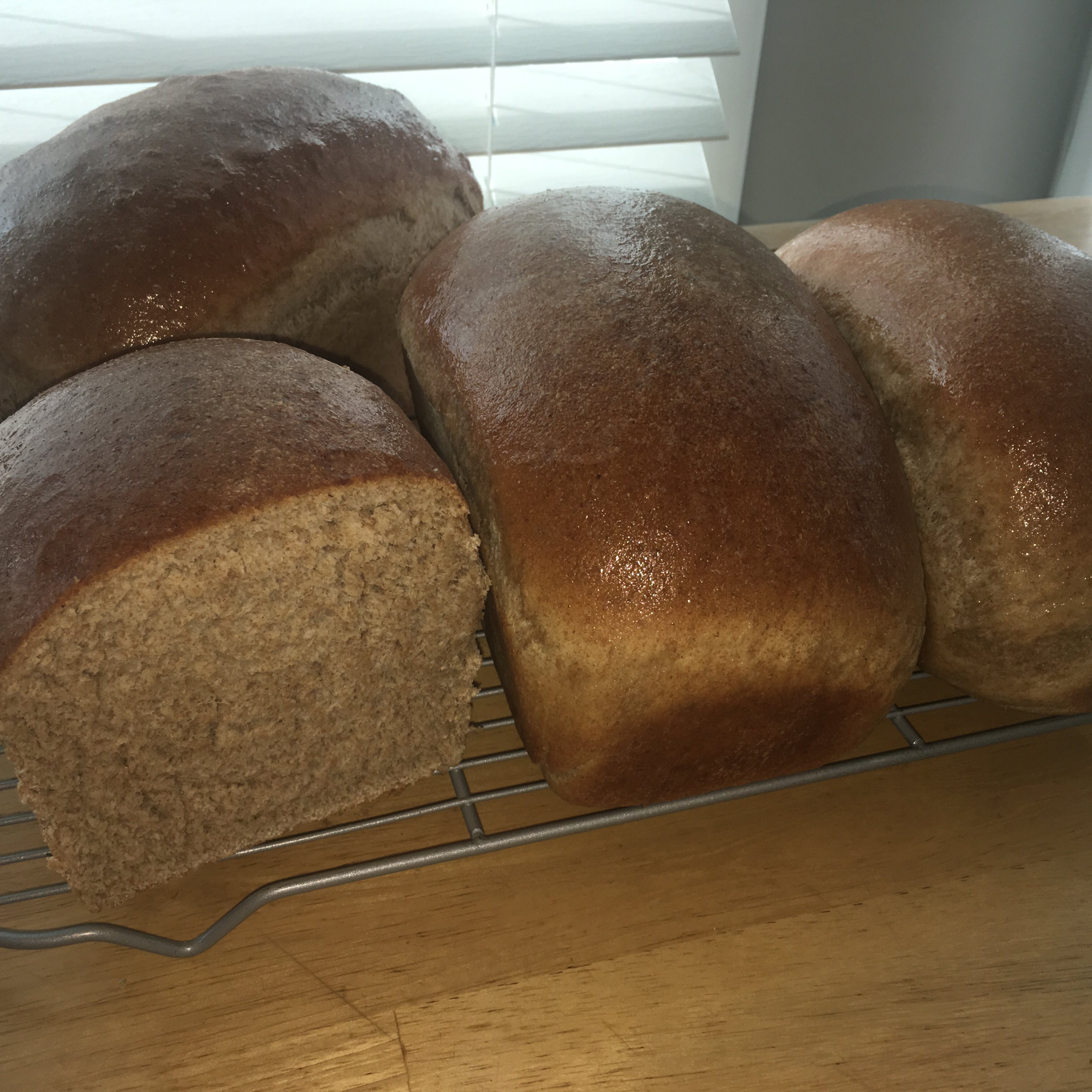 Whole Wheat Bread II