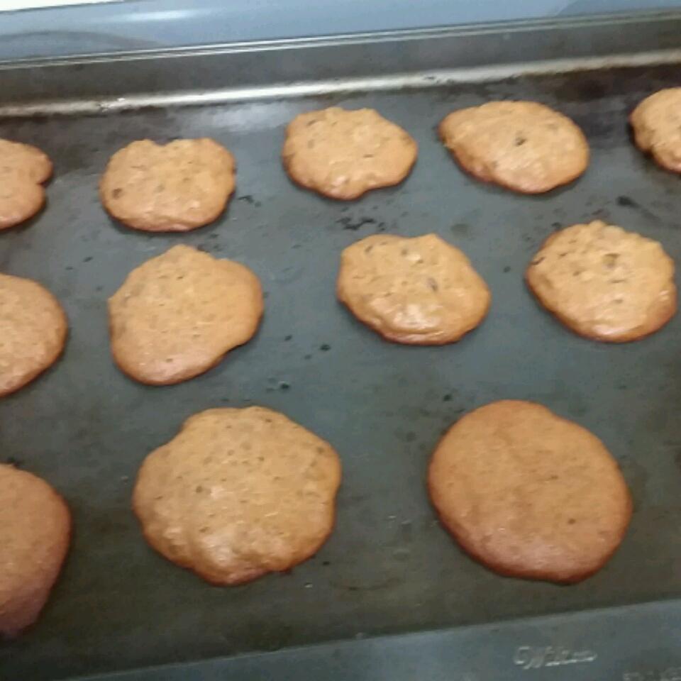 Chocolate Chip Honey Cookies lisa faltersack