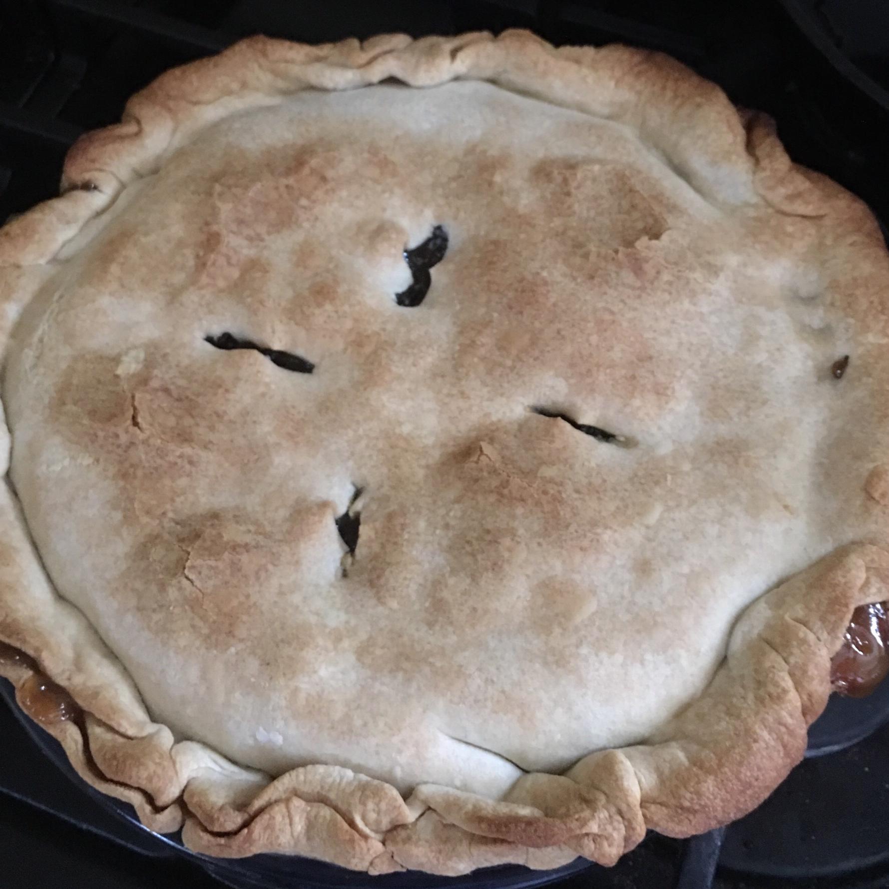 Raisin Pie IV
