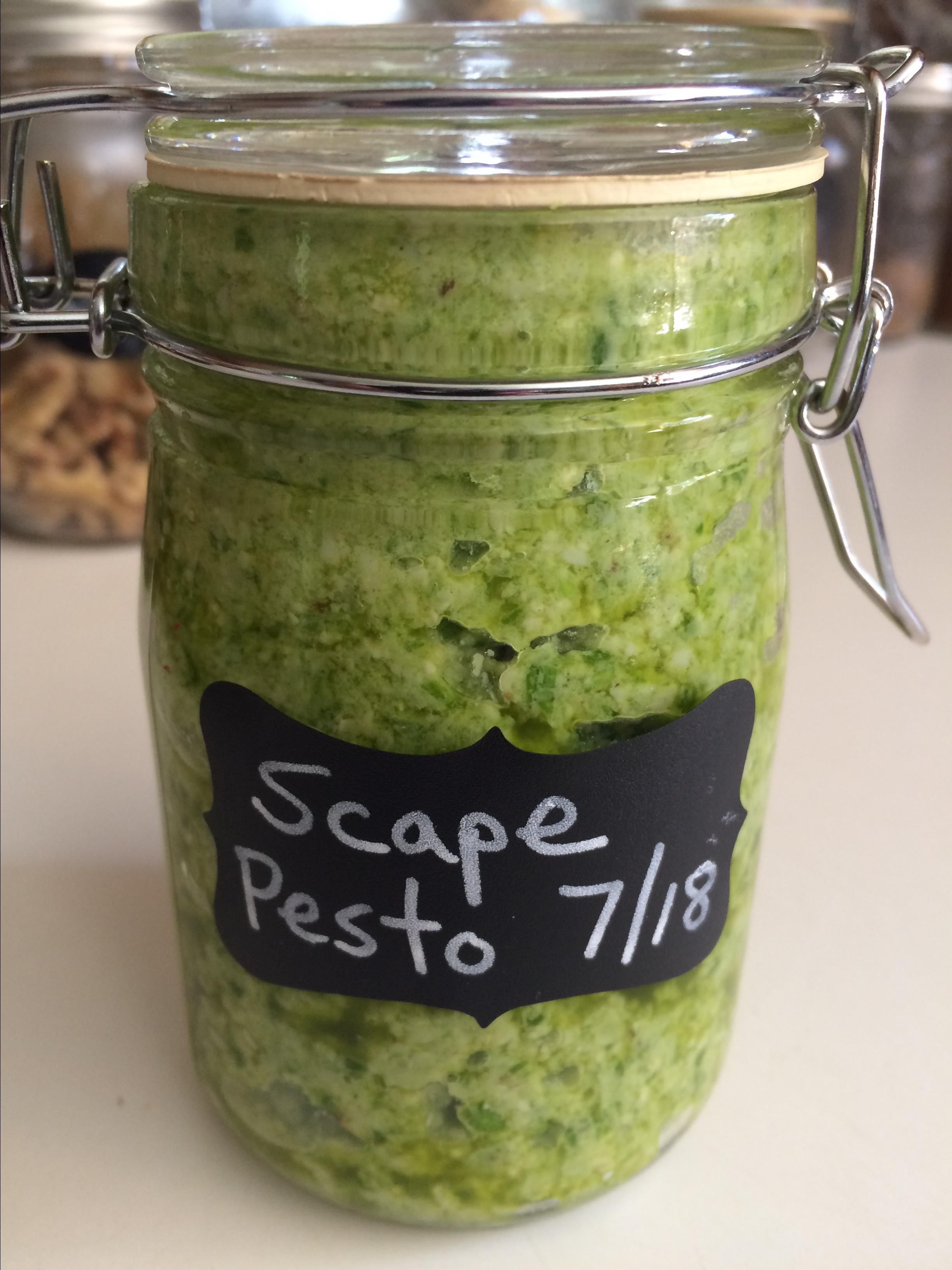 Rudy's Garlic Scape Pesto Mimi Derry