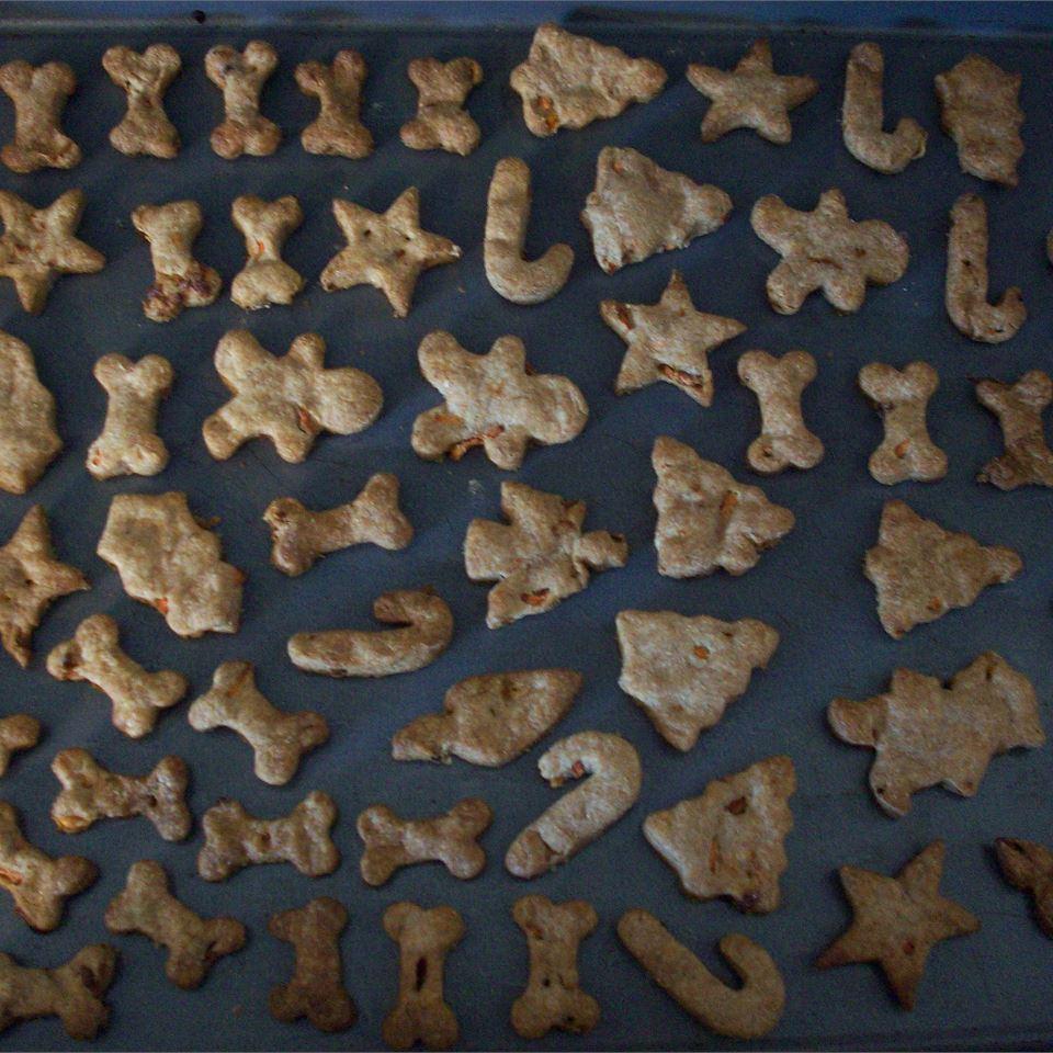 Dog Biscuits II CookinBug