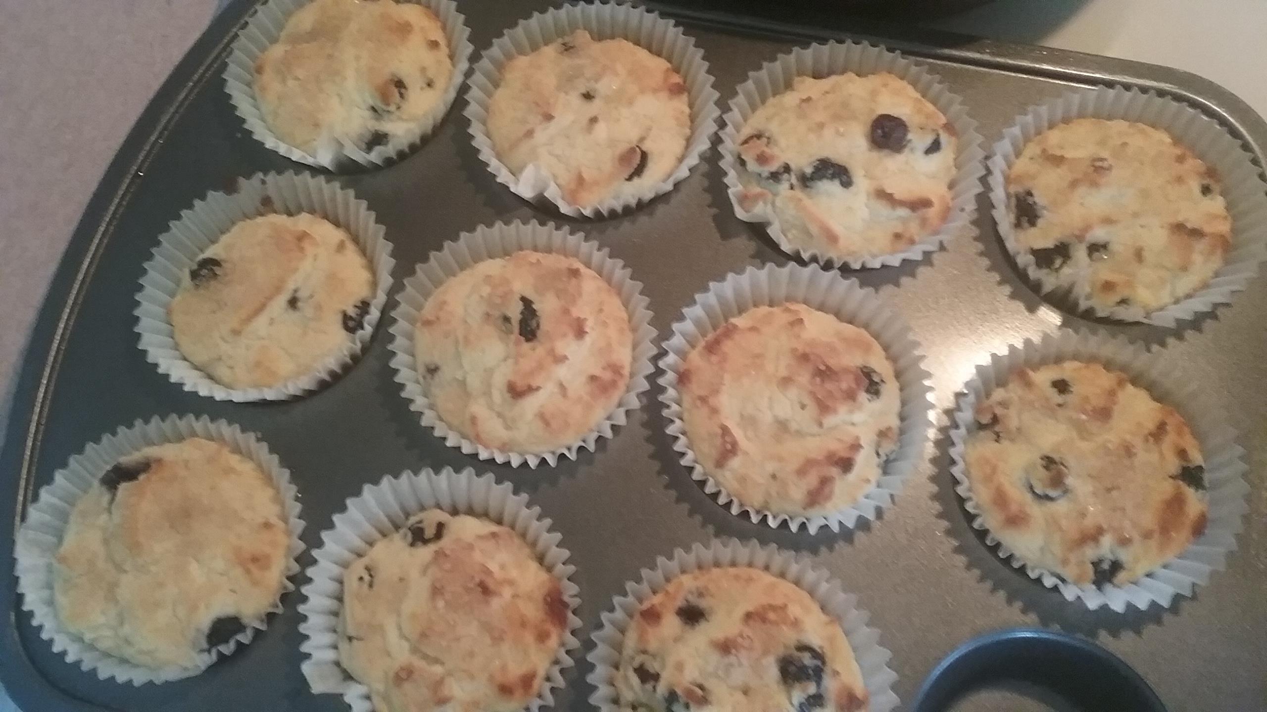 Delicious Gluten-Free Blueberry Corn Muffins Sandy Berry
