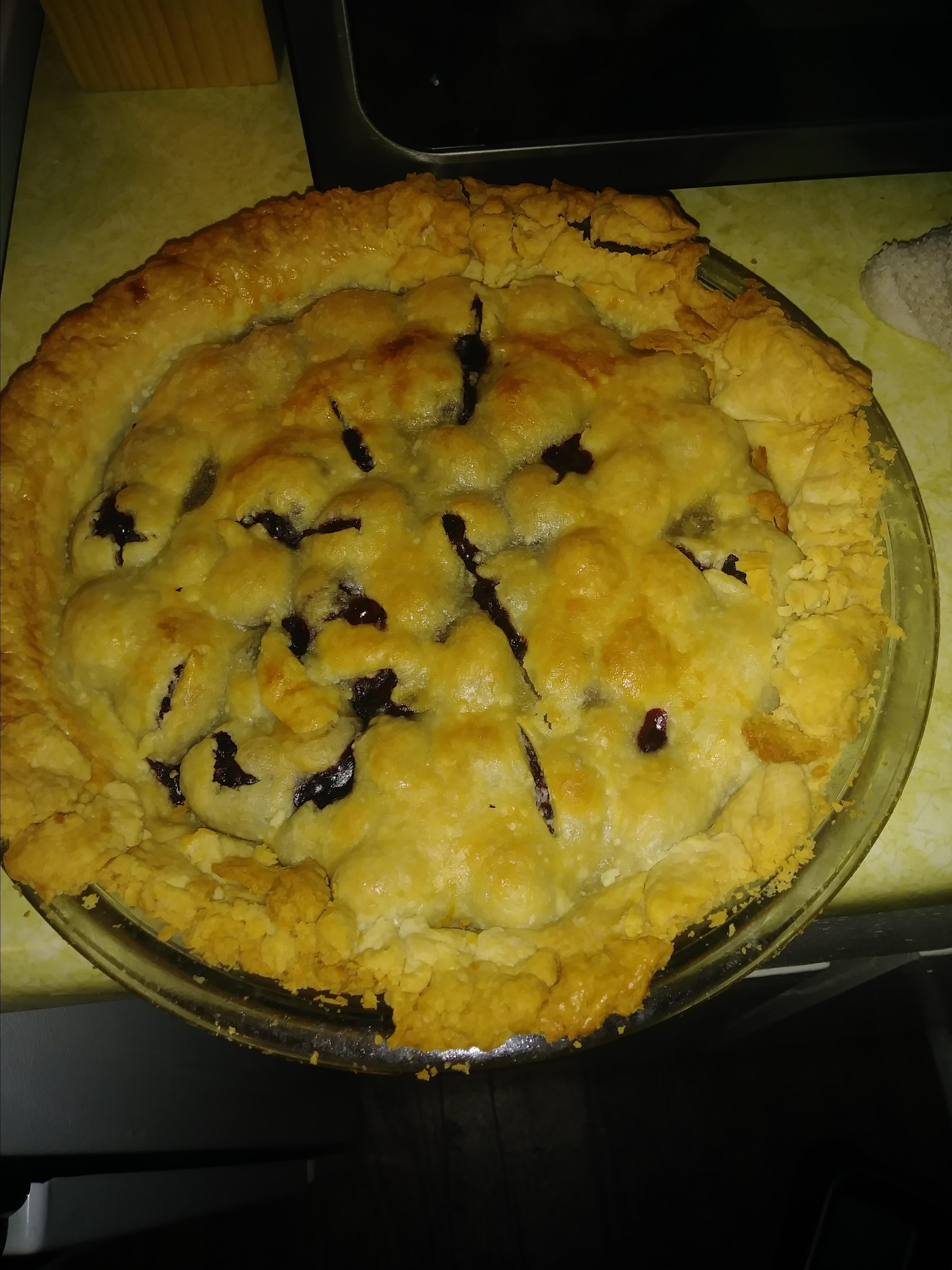 Blackberry Pie I Holly Williams