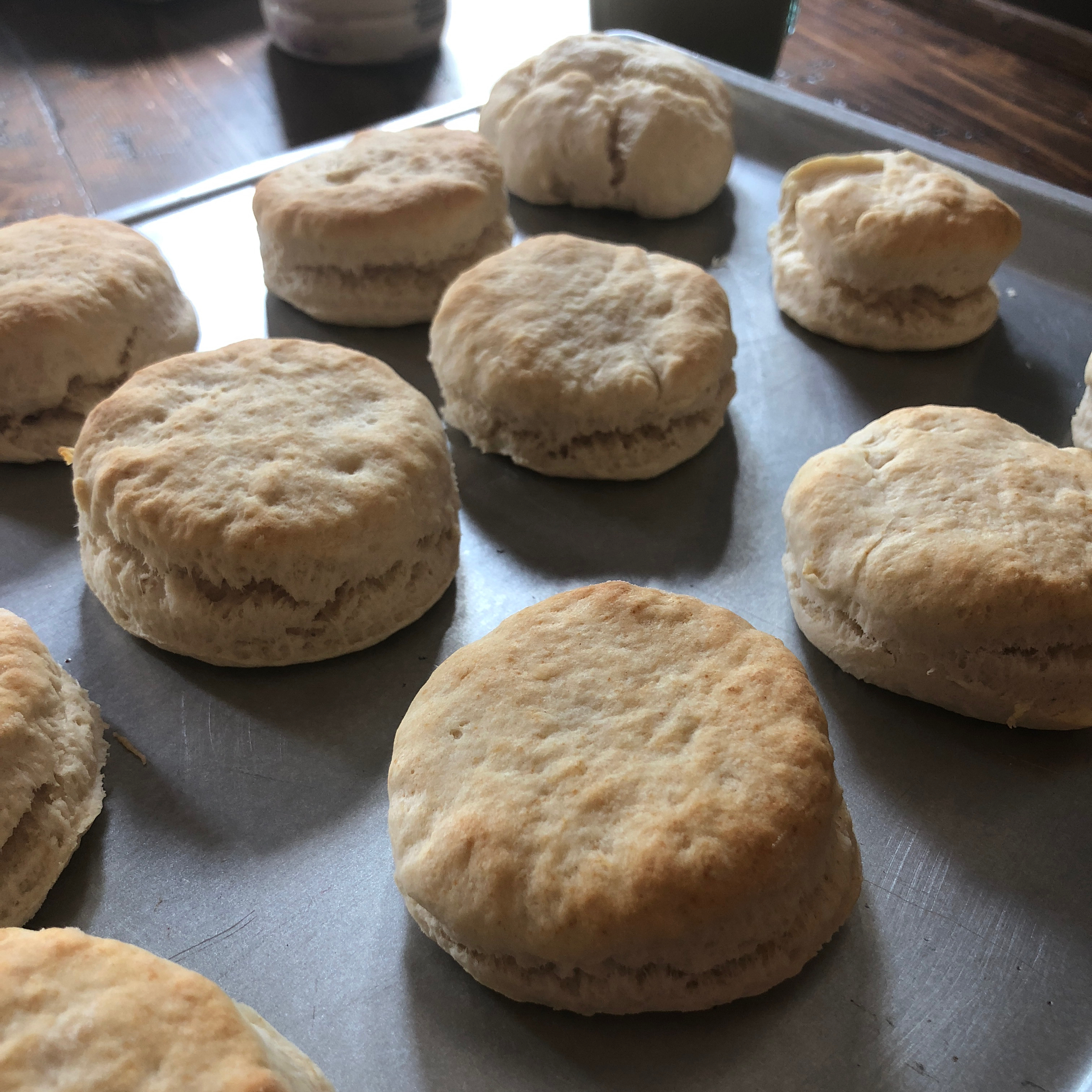 Basic Biscuits Amber Powell