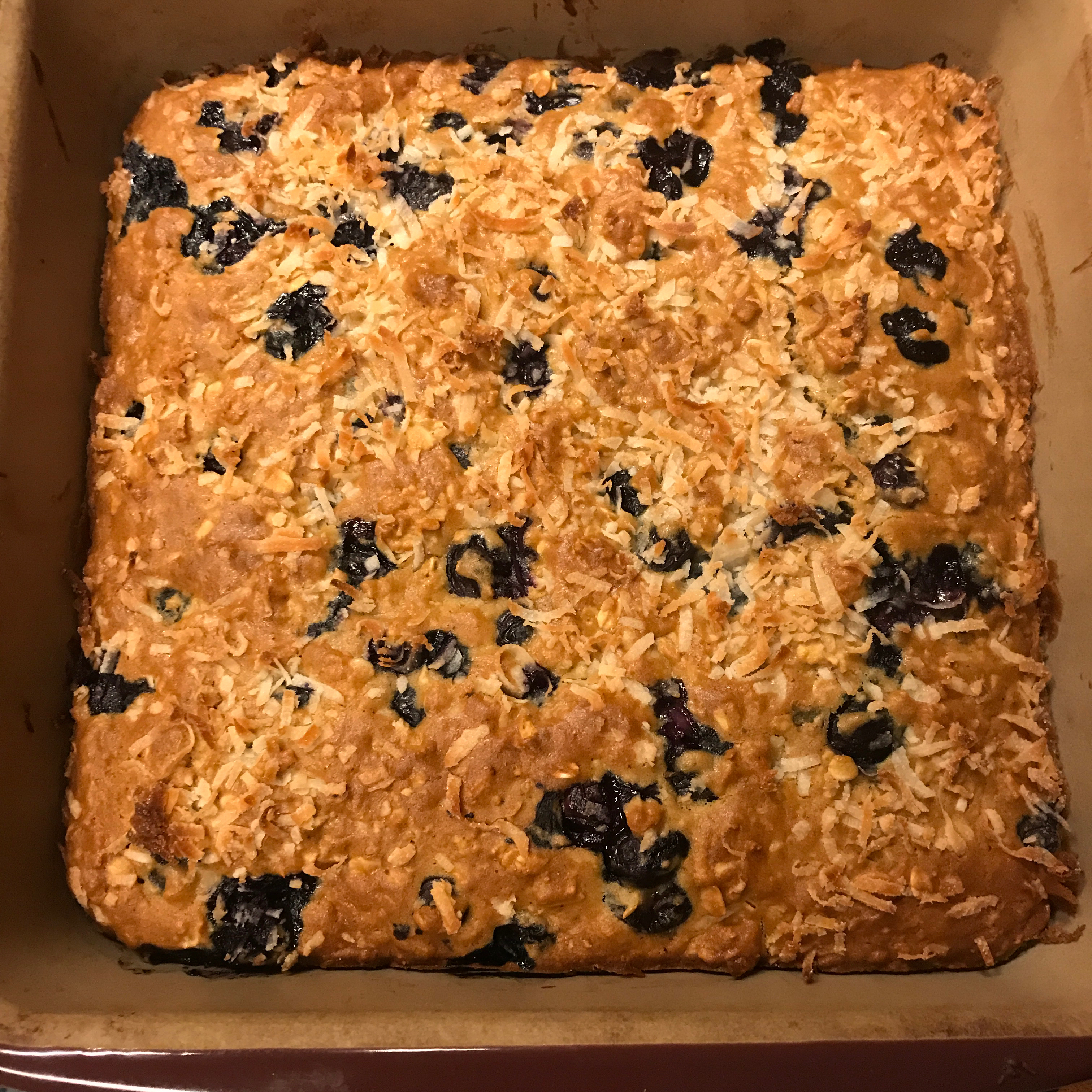 Blueberry Oatmeal Breakfast Bars Heidi