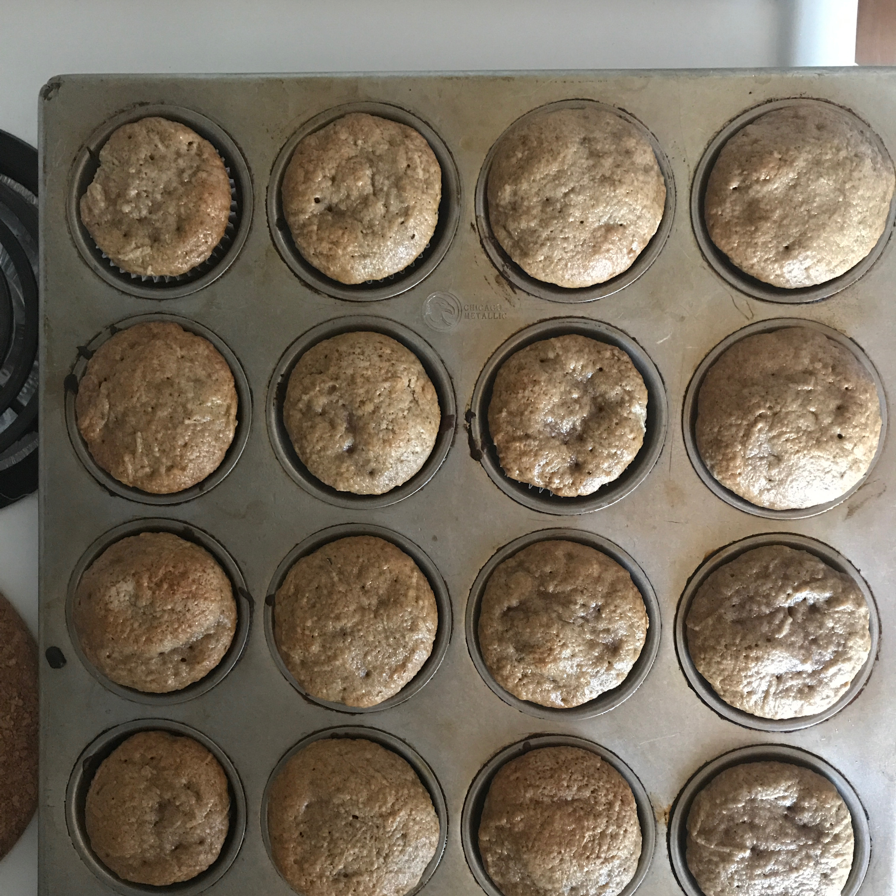 Zucchini Muffins Shelly Ryles