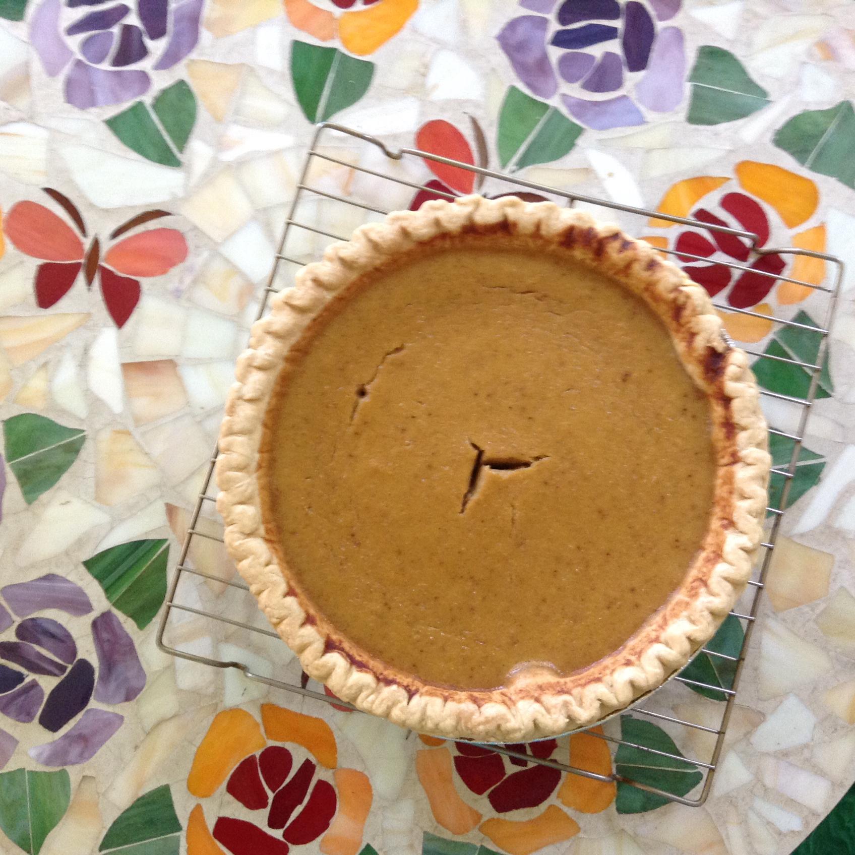 Grandma Darcy's Squash Pie