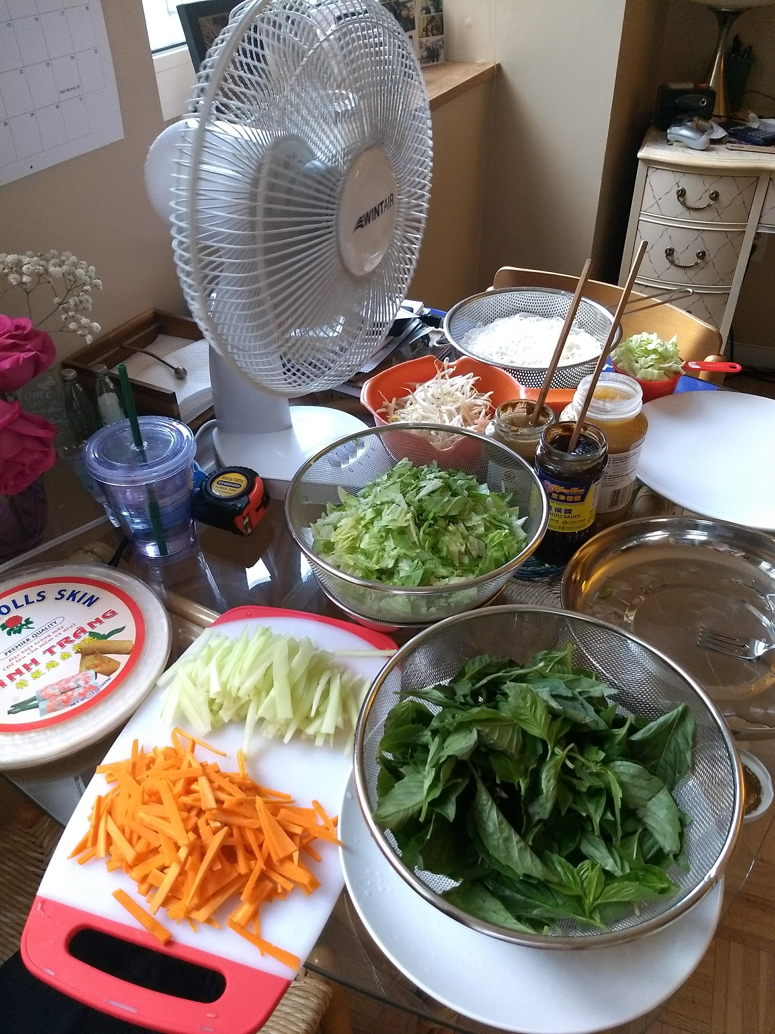 Vegetarian Vietnamese Spring Rolls awong28