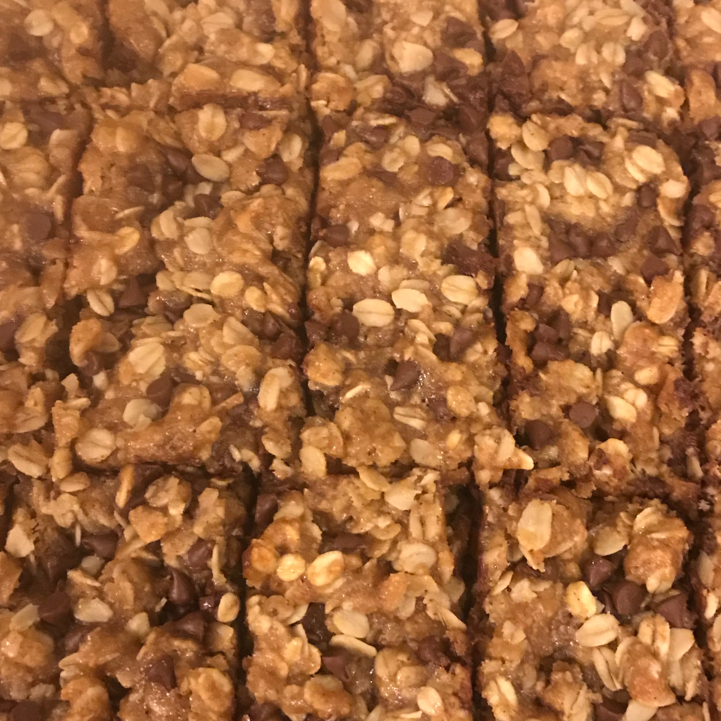Playgroup Granola Bars Elizabeth Peterson