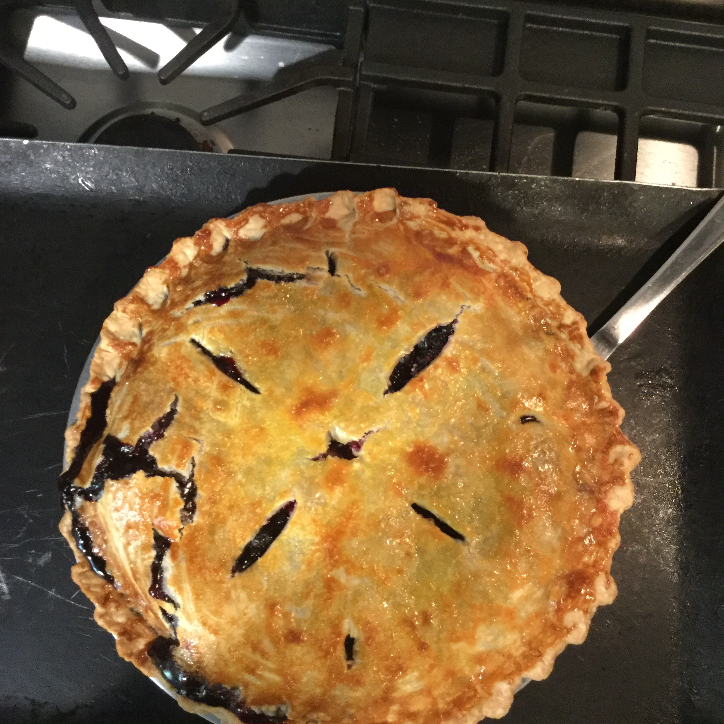 Amazing Blueberry Rhubarb Pie tbird